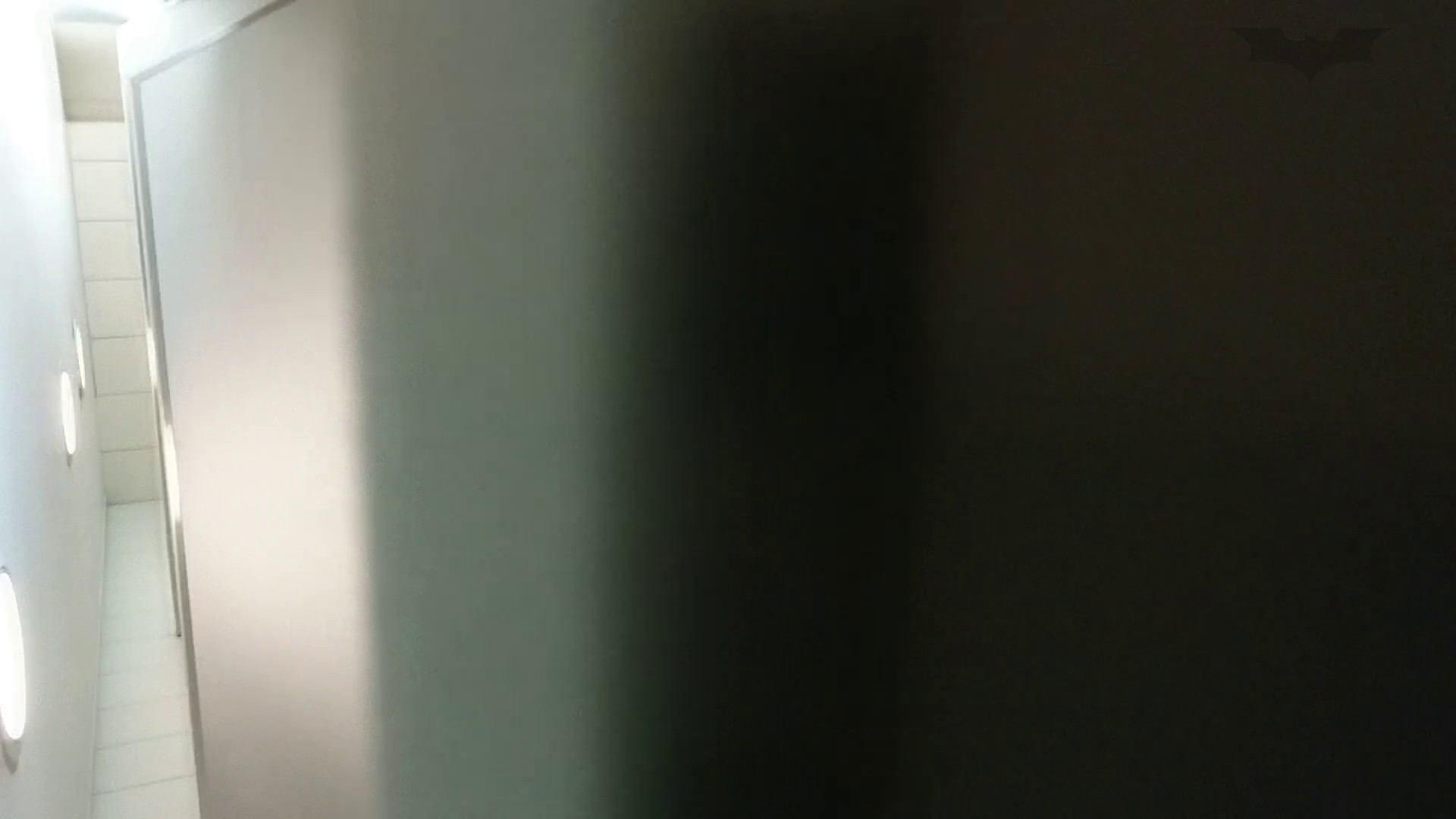 化粧室絵巻 ショッピングモール編 VOL.15 OLのボディ   0  67PIX 57