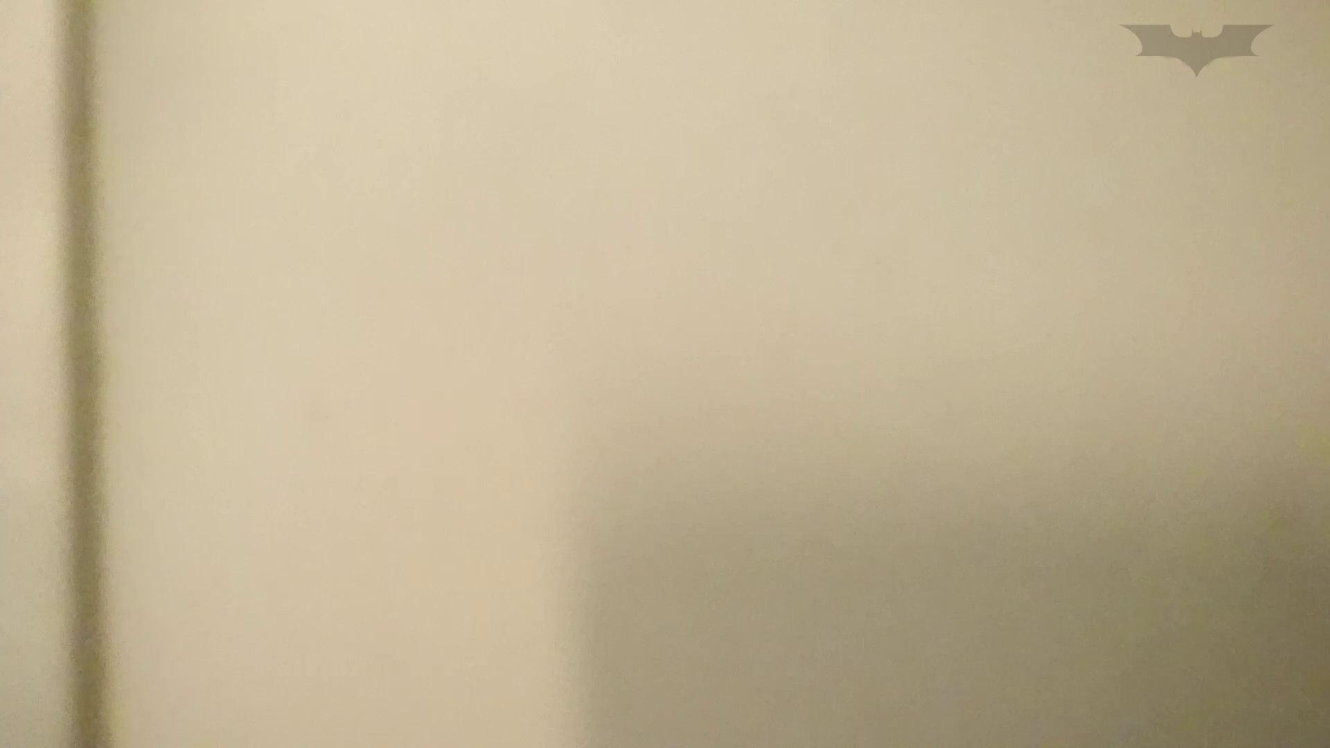 化粧室絵巻 ショッピングモール編 VOL.15 OLのボディ   0  67PIX 59