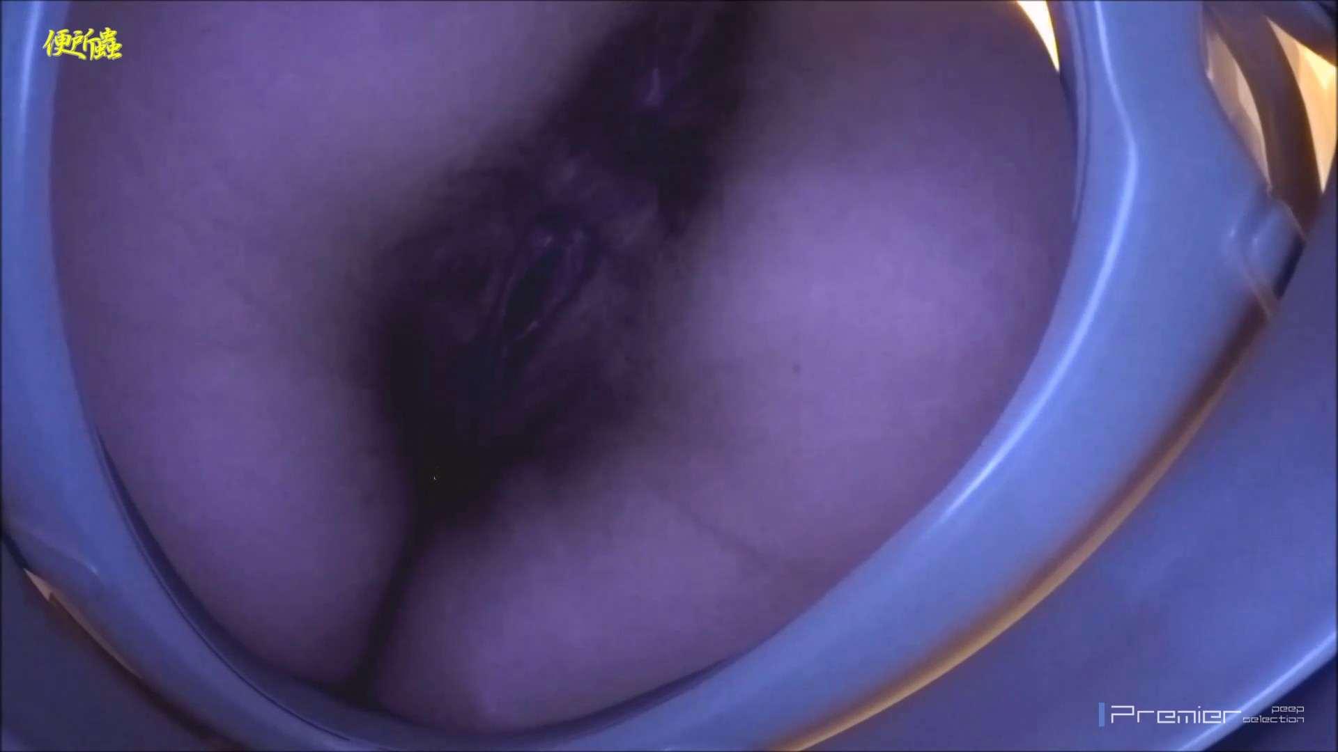 vol.06 便所蟲さんのリターン~寺子屋洗面所盗撮~ 便器  96PIX 55