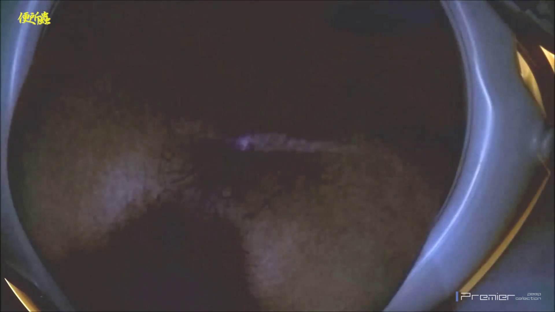 vol.06 便所蟲さんのリターン~寺子屋洗面所盗撮~ 便器  96PIX 80