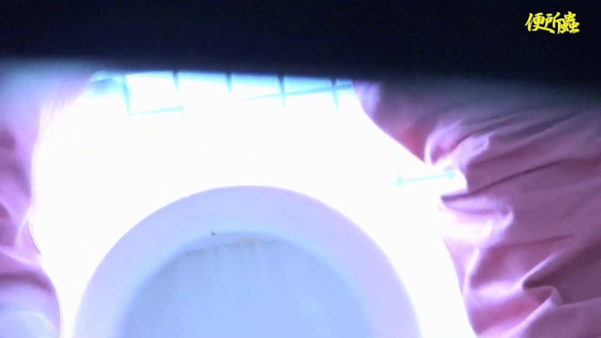 vol.01 便所蟲さんのリターン~便所蟲2匹目~ 洗面所 ぱこり動画紹介 56PIX 16