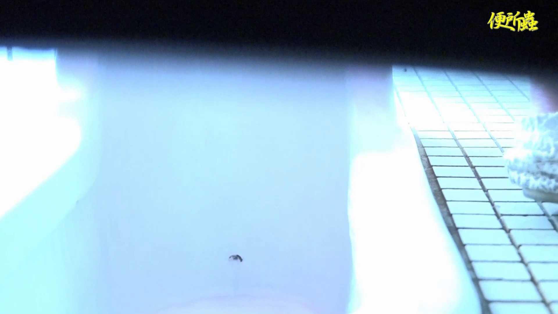 vol.01 便所蟲さんのリターン~便所蟲2匹目~ 便所 性交動画流出 56PIX 19
