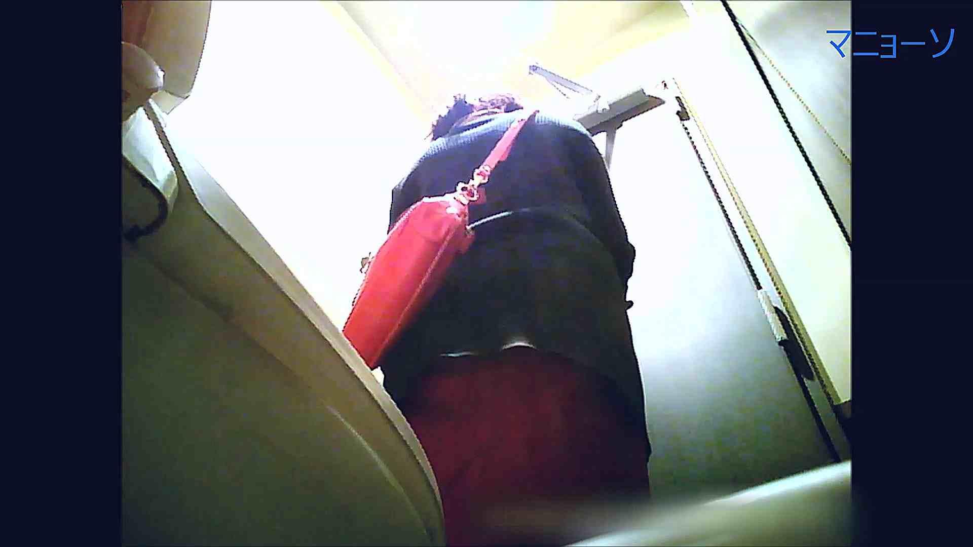 トイレでひと肌脱いでもらいました (OL編)Vol.08 トイレの実態  52PIX 52