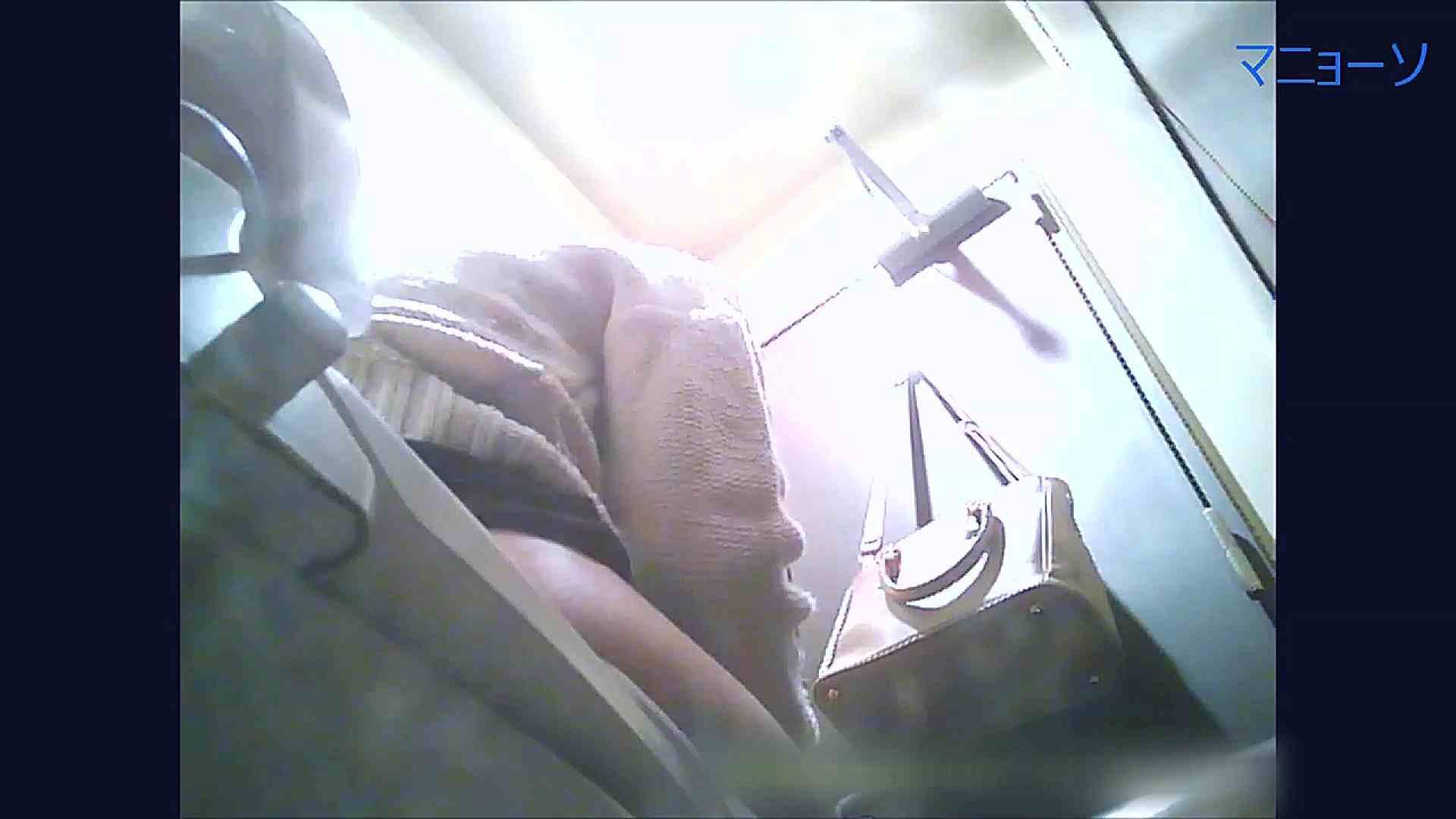 トイレでひと肌脱いでもらいました (OL編)Vol.11 肛門 ワレメ動画紹介 64PIX 8