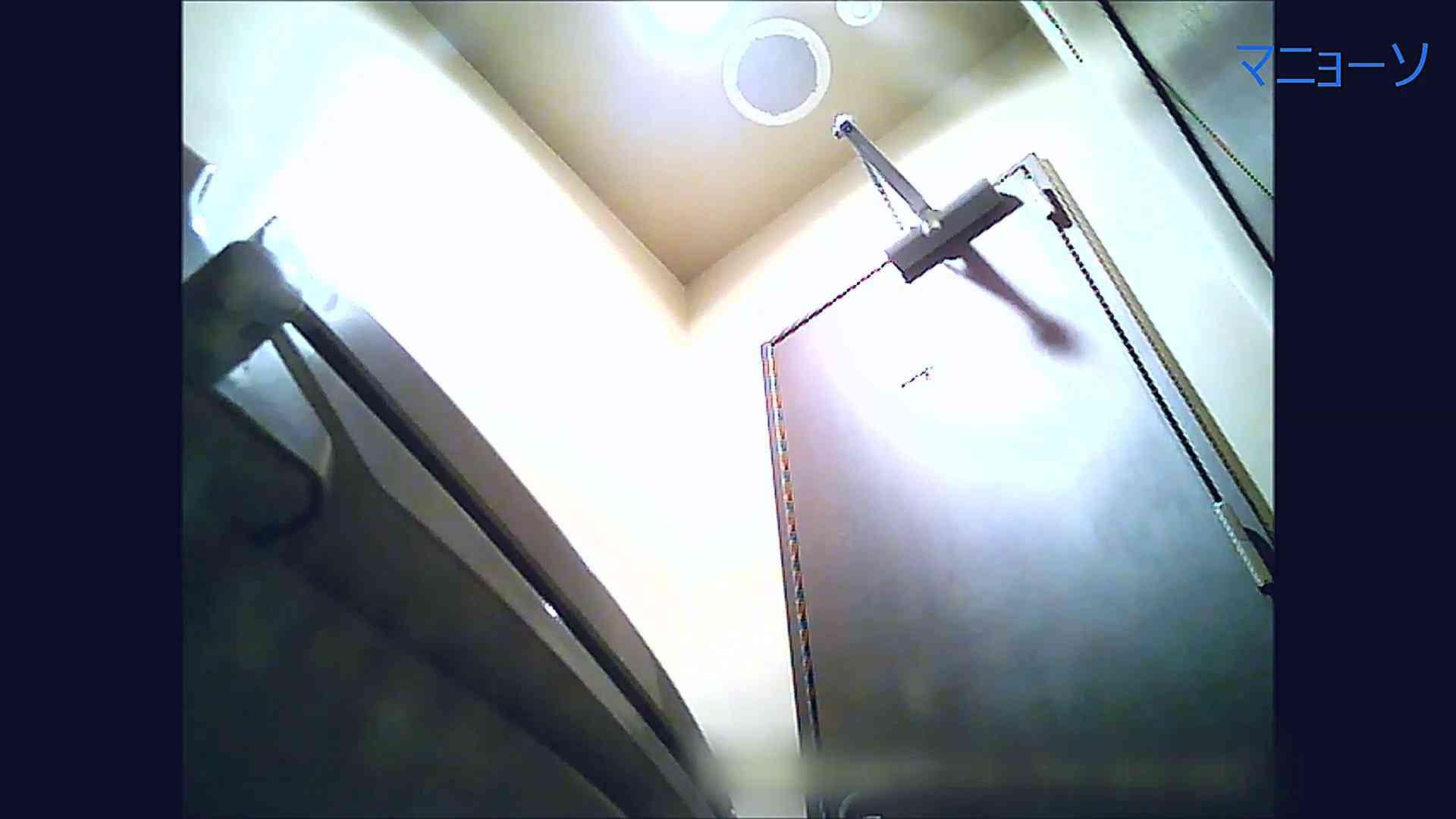 トイレでひと肌脱いでもらいました (OL編)Vol.11 OLのボディ  64PIX 36