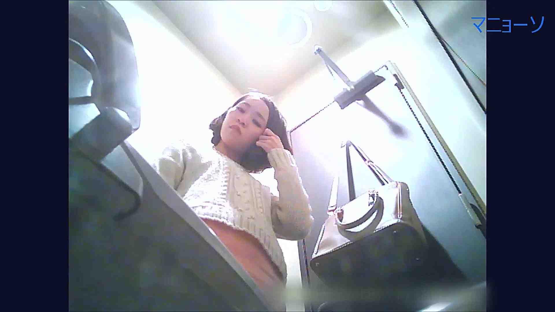 トイレでひと肌脱いでもらいました (OL編)Vol.11 肛門 ワレメ動画紹介 64PIX 47