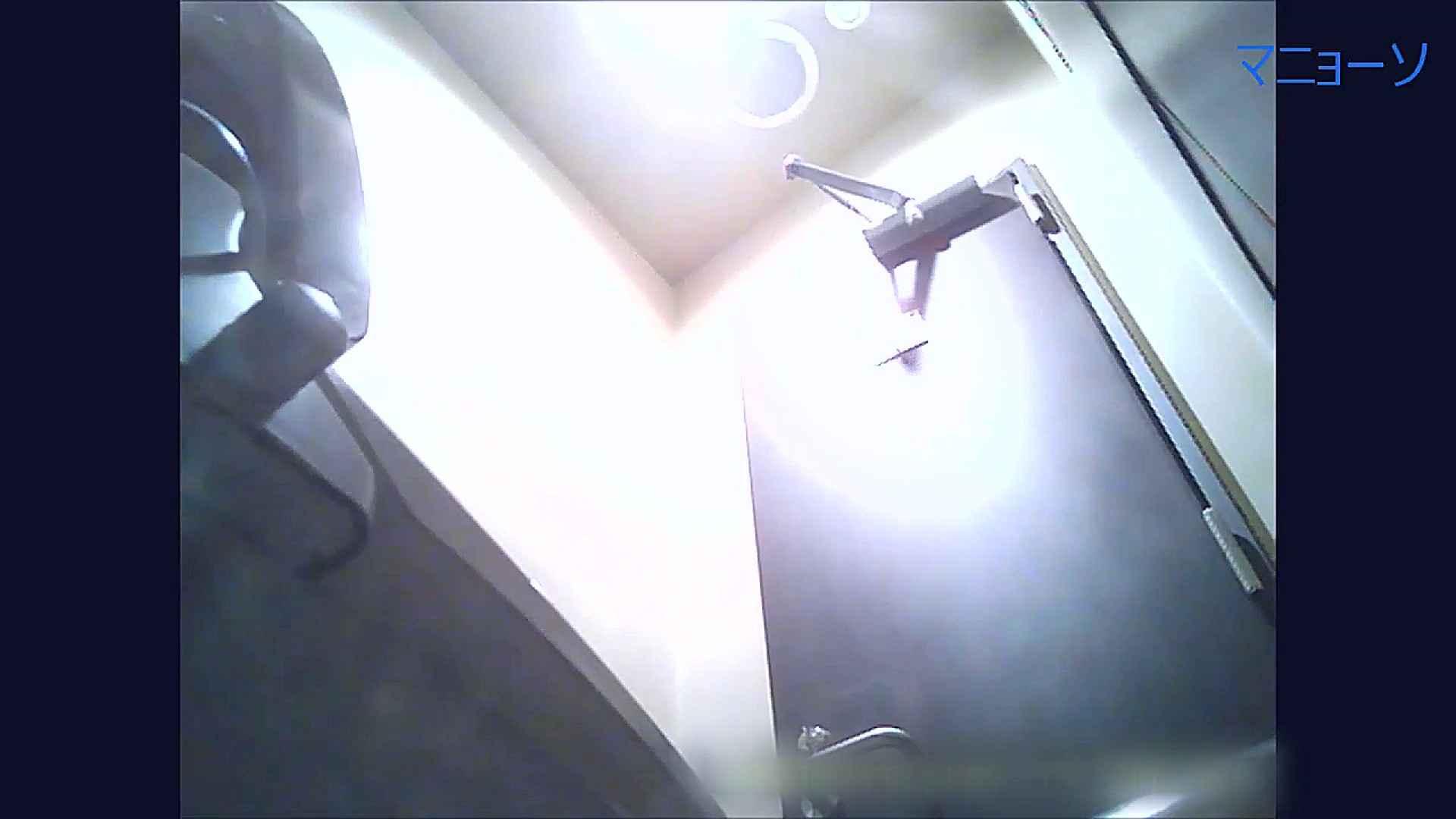トイレでひと肌脱いでもらいました (OL編)Vol.11 肛門 ワレメ動画紹介 64PIX 50
