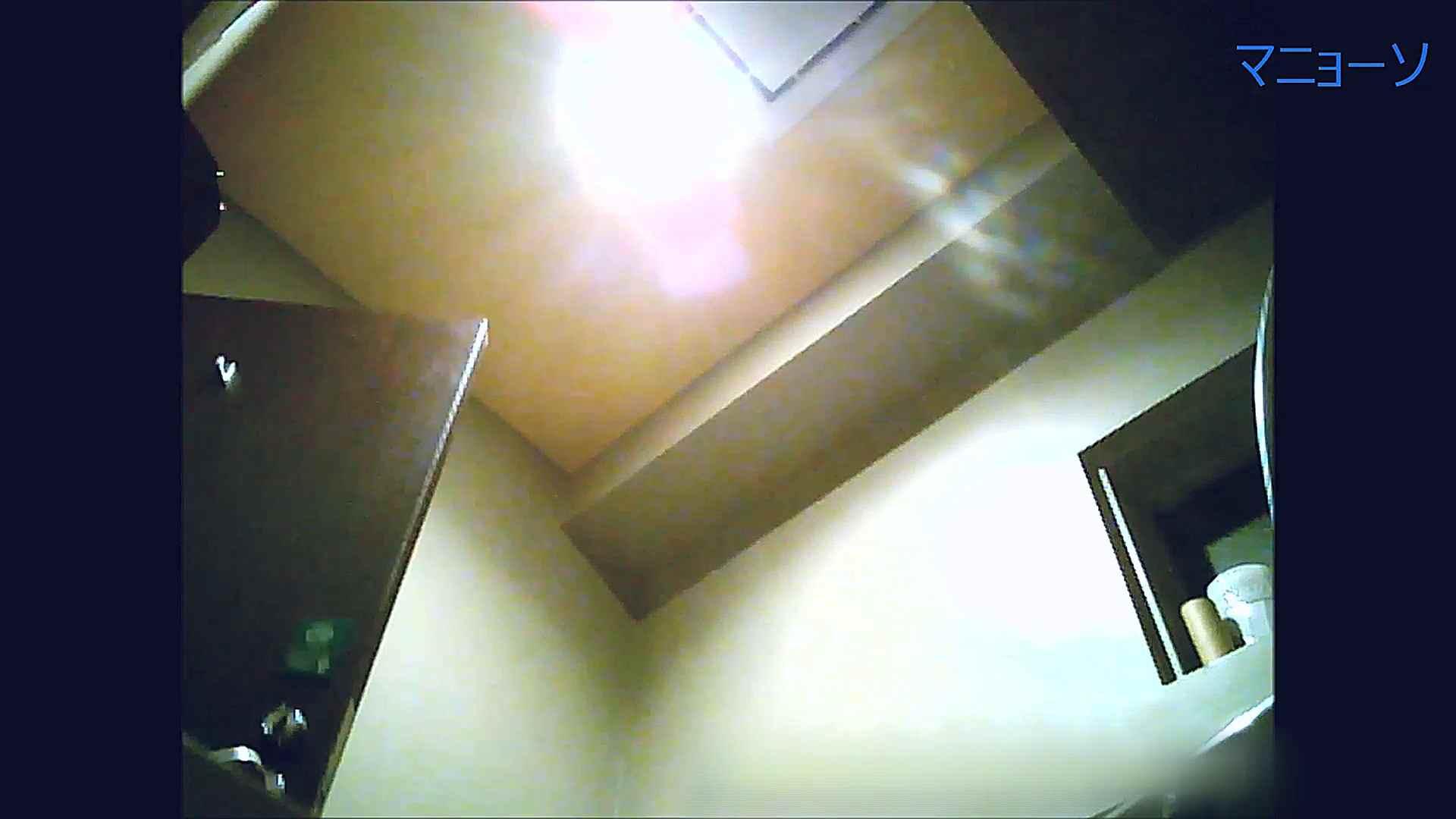 トイレでひと肌脱いでもらいました (OL編)Vol.13 OLのボディ  87PIX 70
