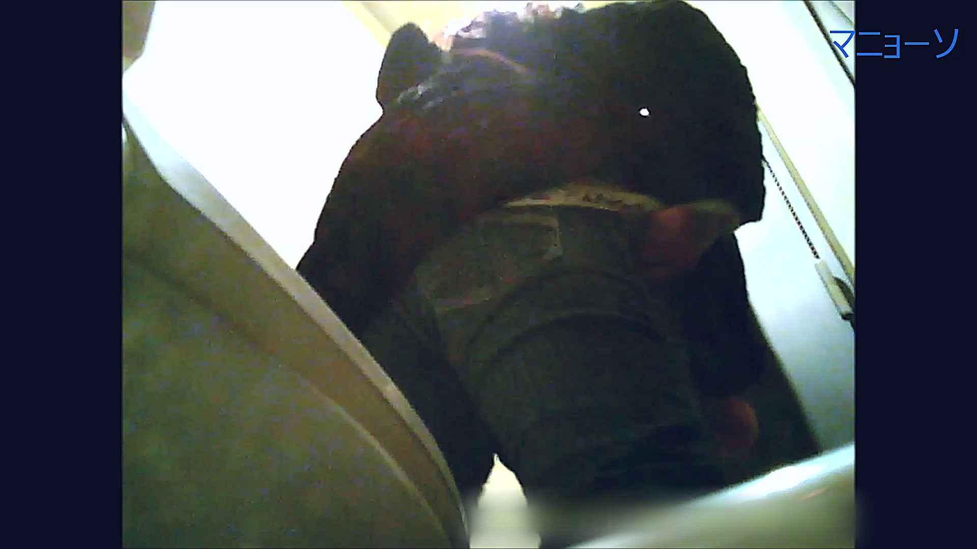 トイレでひと肌脱いでもらいました (番外編)Vol.02 OLのボディ  58PIX 9