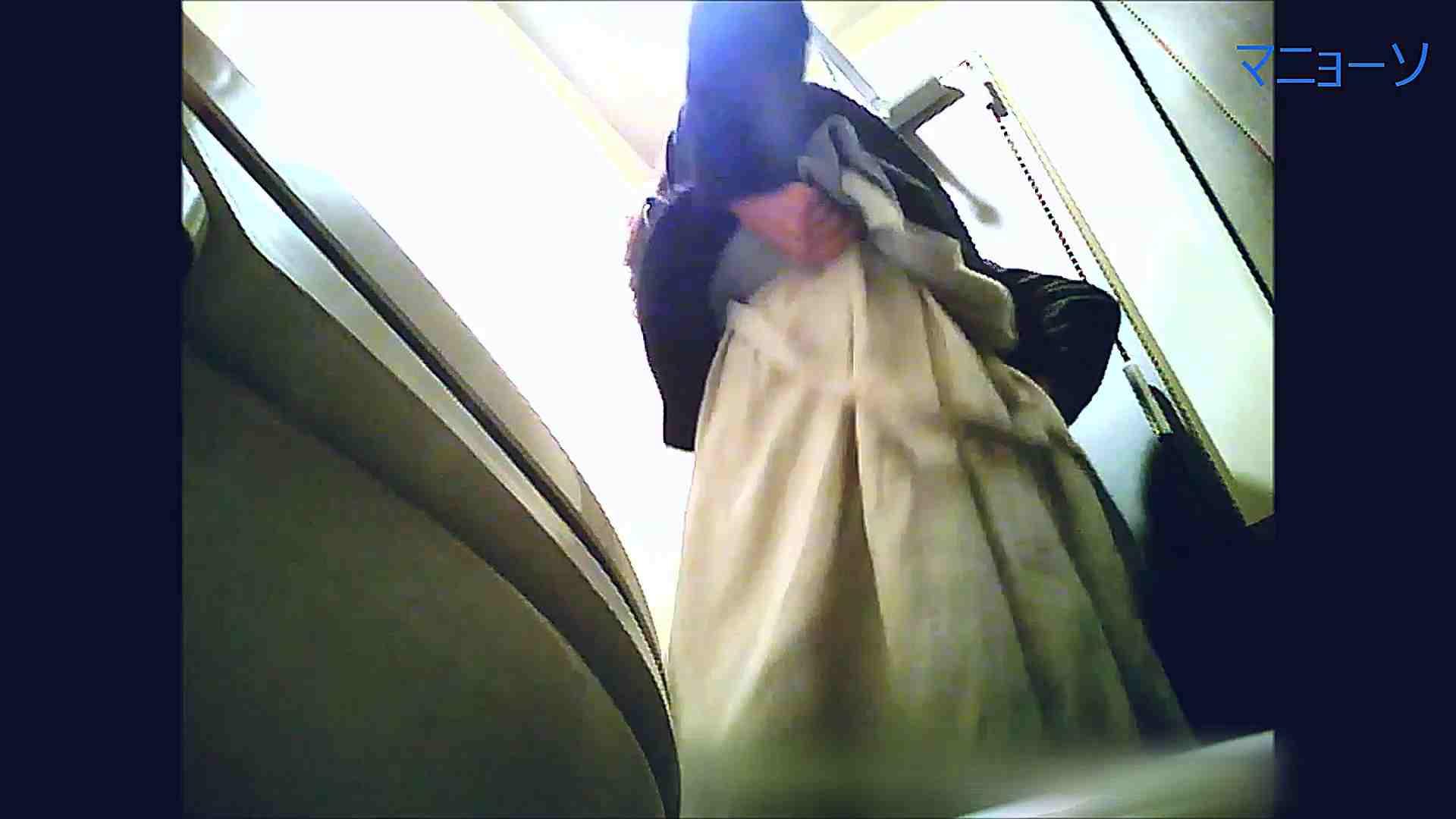 トイレでひと肌脱いでもらいました (番外編)Vol.02 盗撮 スケベ動画紹介 58PIX 44