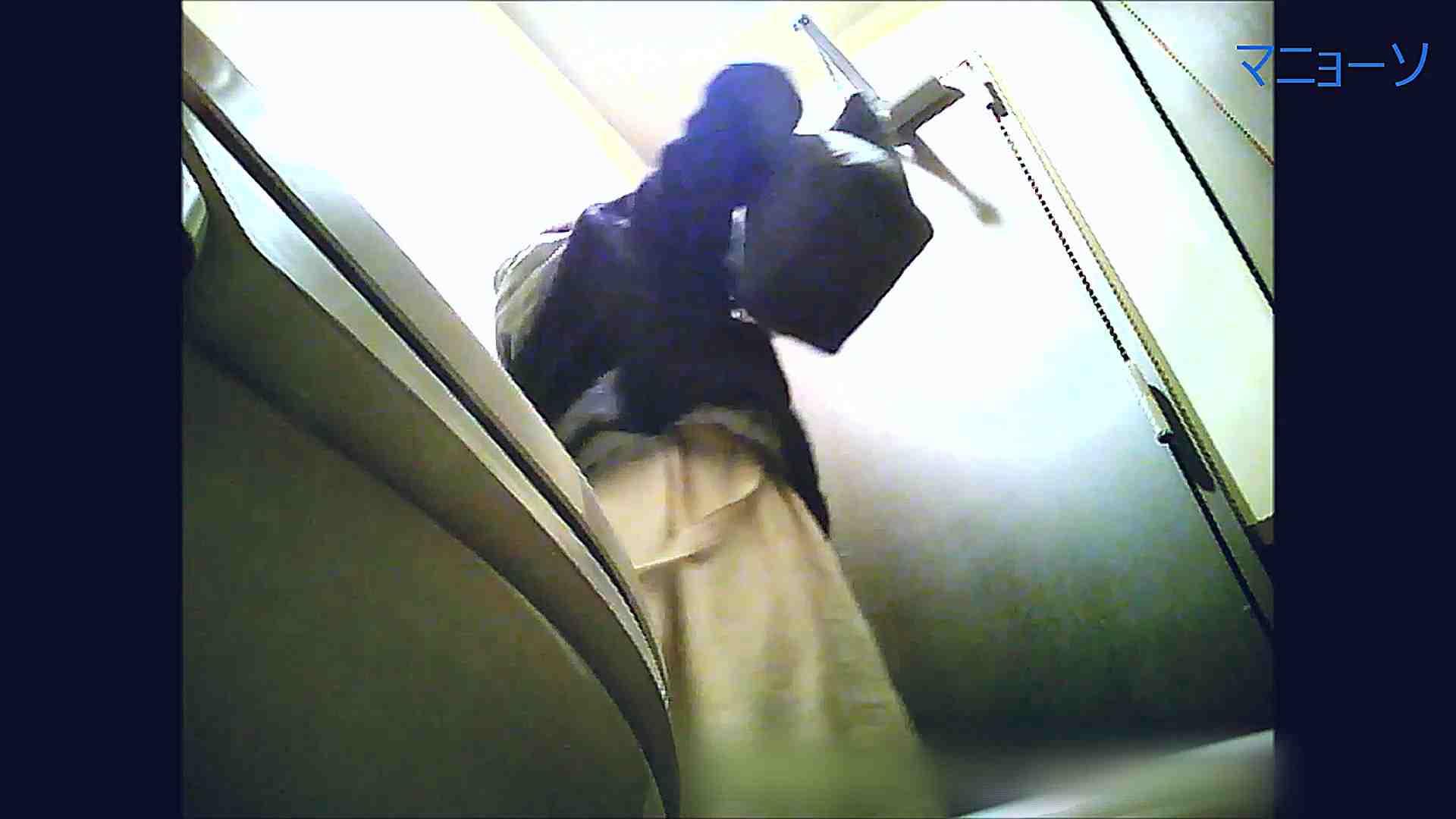 トイレでひと肌脱いでもらいました (番外編)Vol.02 OLのボディ  58PIX 45