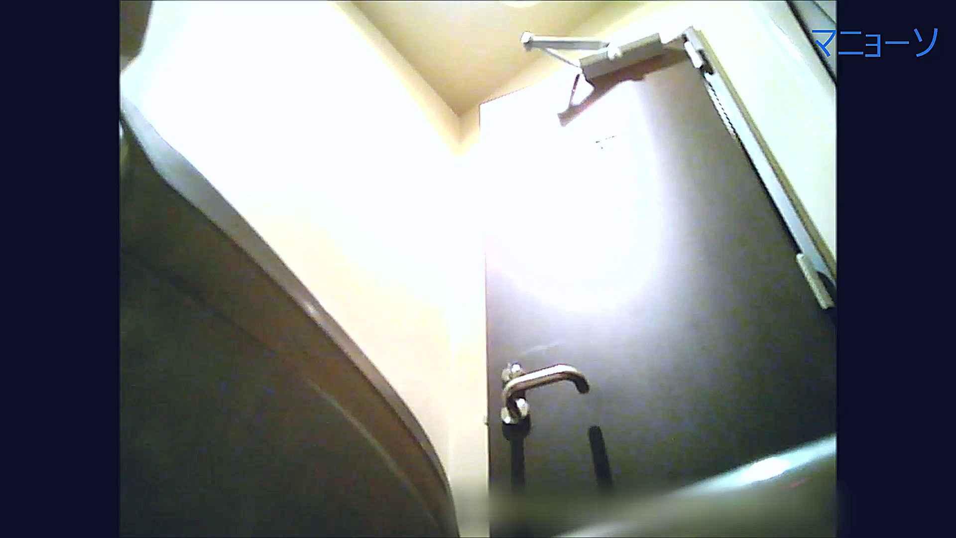 トイレでひと肌脱いでもらいました (番外編)Vol.02 OLのボディ  58PIX 48