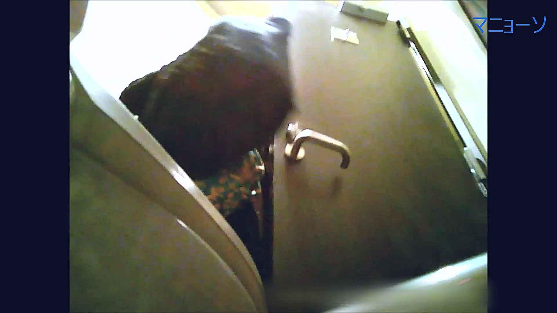トイレでひと肌脱いでもらいました (番外編)Vol.02 OLのボディ   トイレの実態  58PIX 49