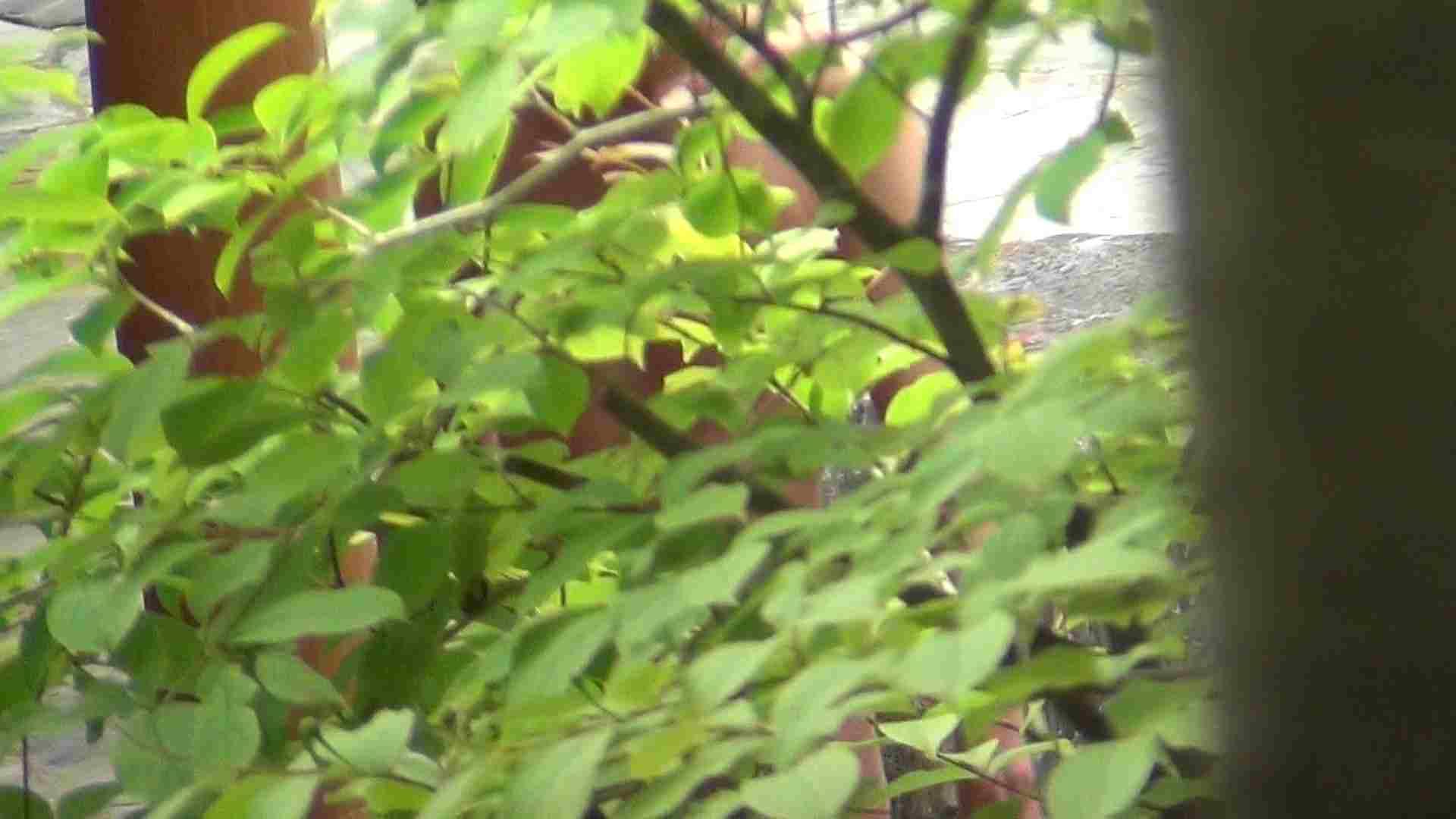 ハイビジョンVol.22 美魔女の小さくても張りのあるオッパイ 美女のボディ アダルト動画キャプチャ 86PIX 29