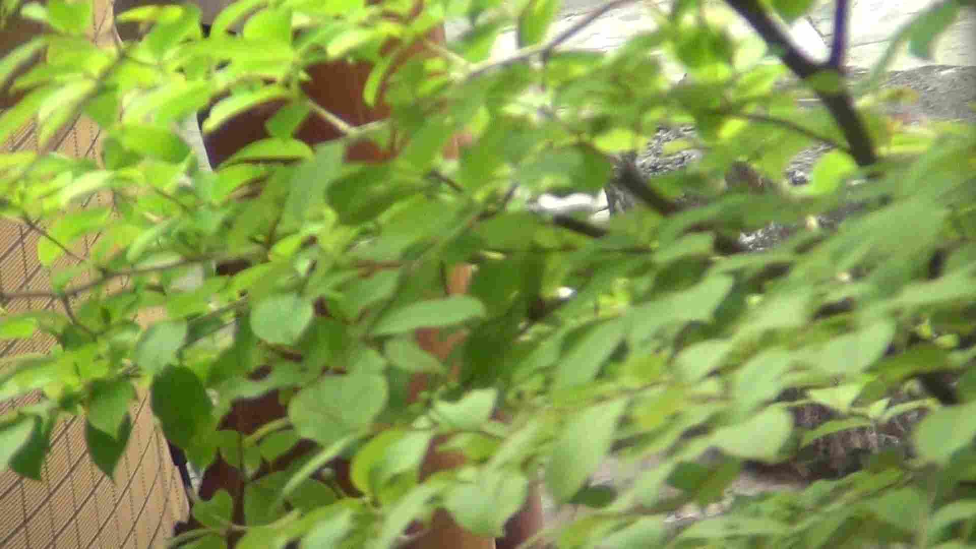 ハイビジョンVol.22 美魔女の小さくても張りのあるオッパイ 露天  86PIX 30