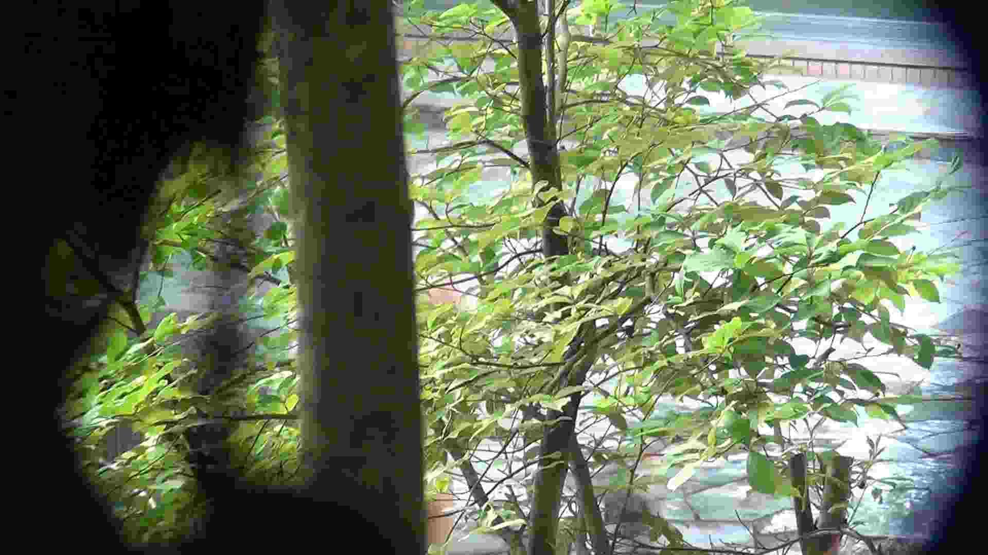 Vol.66 血縁関係三人の裸体鑑賞 タオルが憎い OLのボディ おまんこ無修正動画無料 59PIX 47