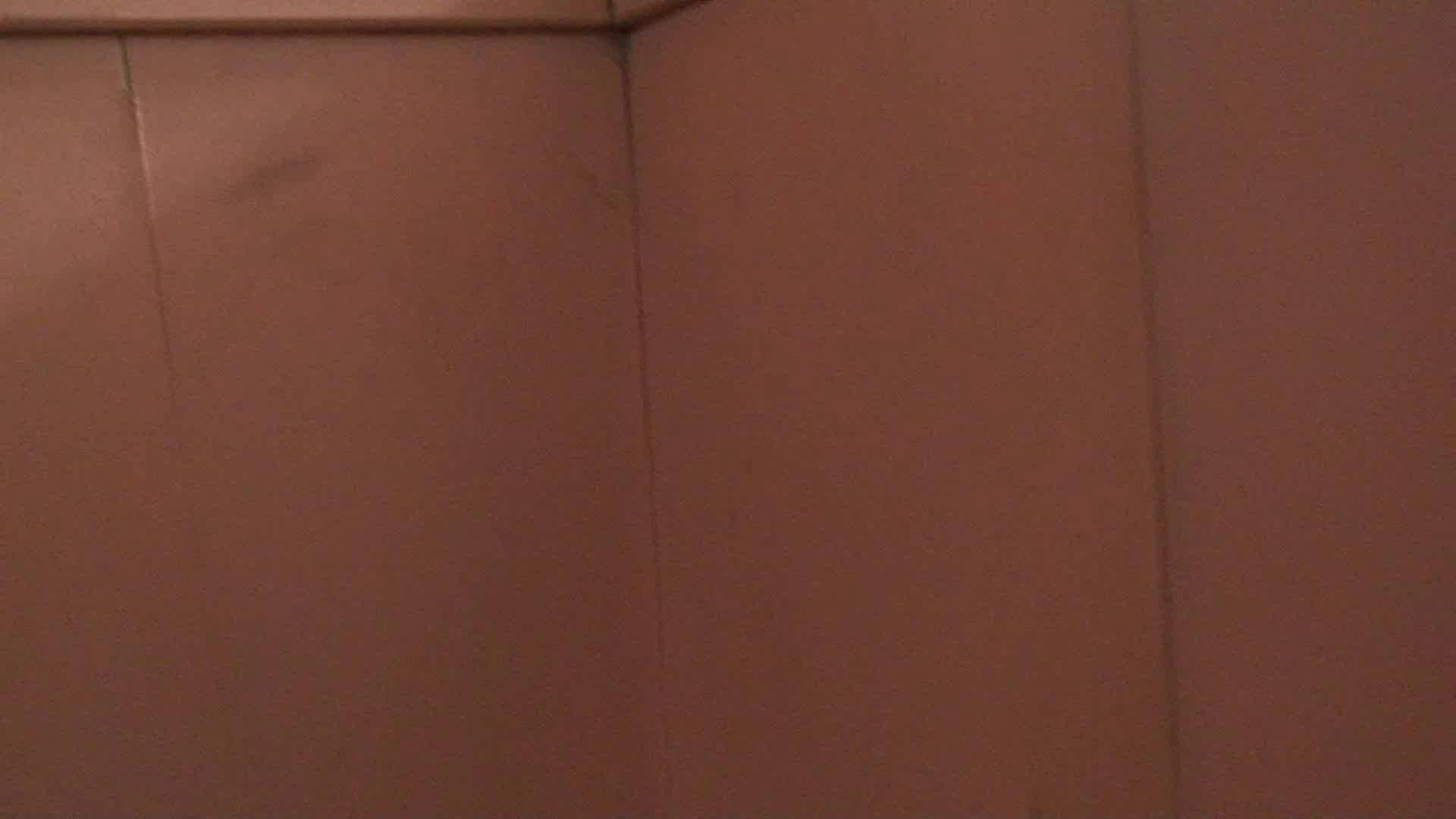 洗面所内潜入!同級生が同級生を盗撮! vol.02 盗撮 | OLのボディ  98PIX 49