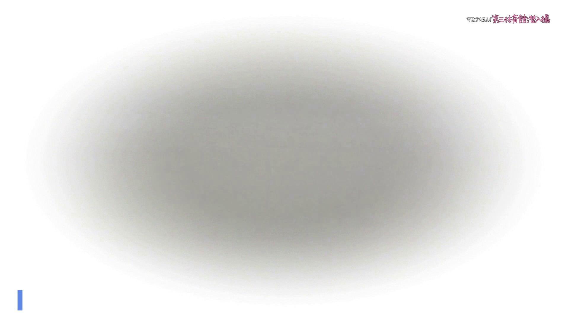 第三体育館File045進化4! これこそ絶世美女でしょう【無料サンプル】 体育館 ぱこり動画紹介 84PIX 34