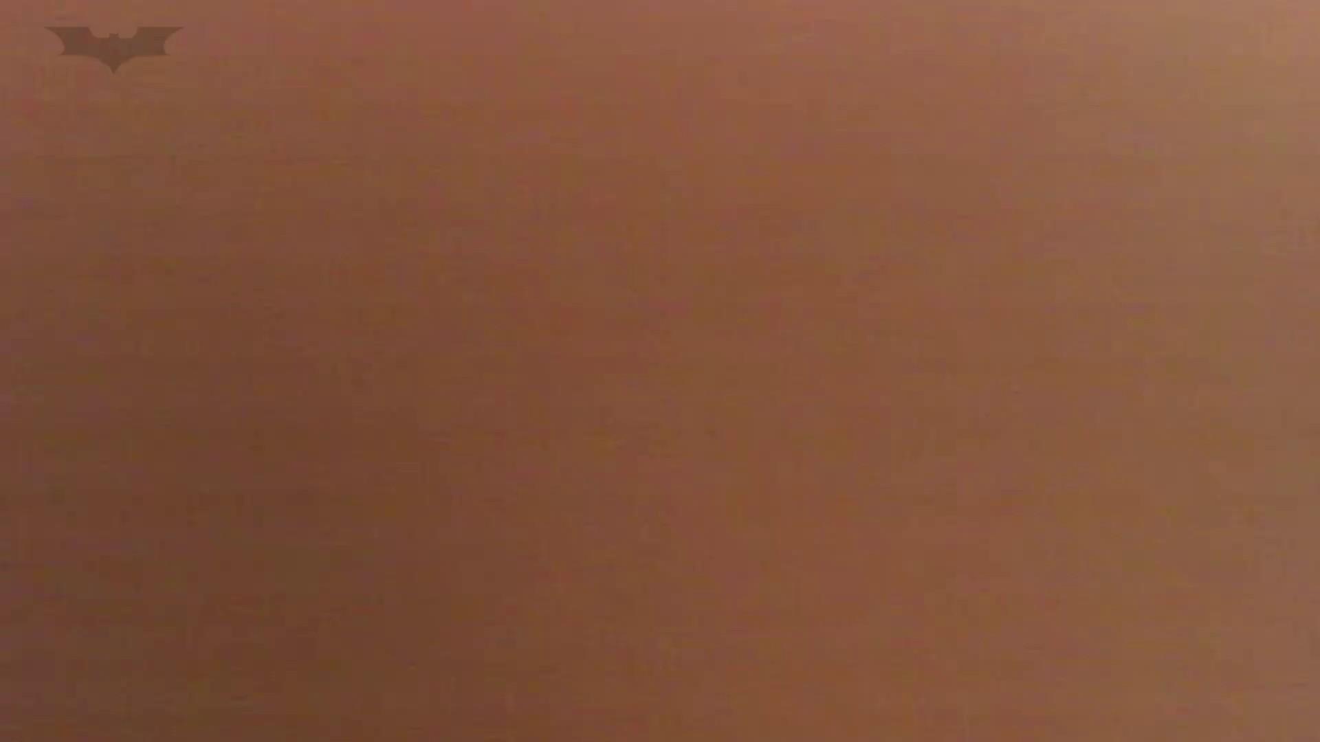 夏の思い出浜辺トイレ盗撮Vol.13 トイレの実態  91PIX 65