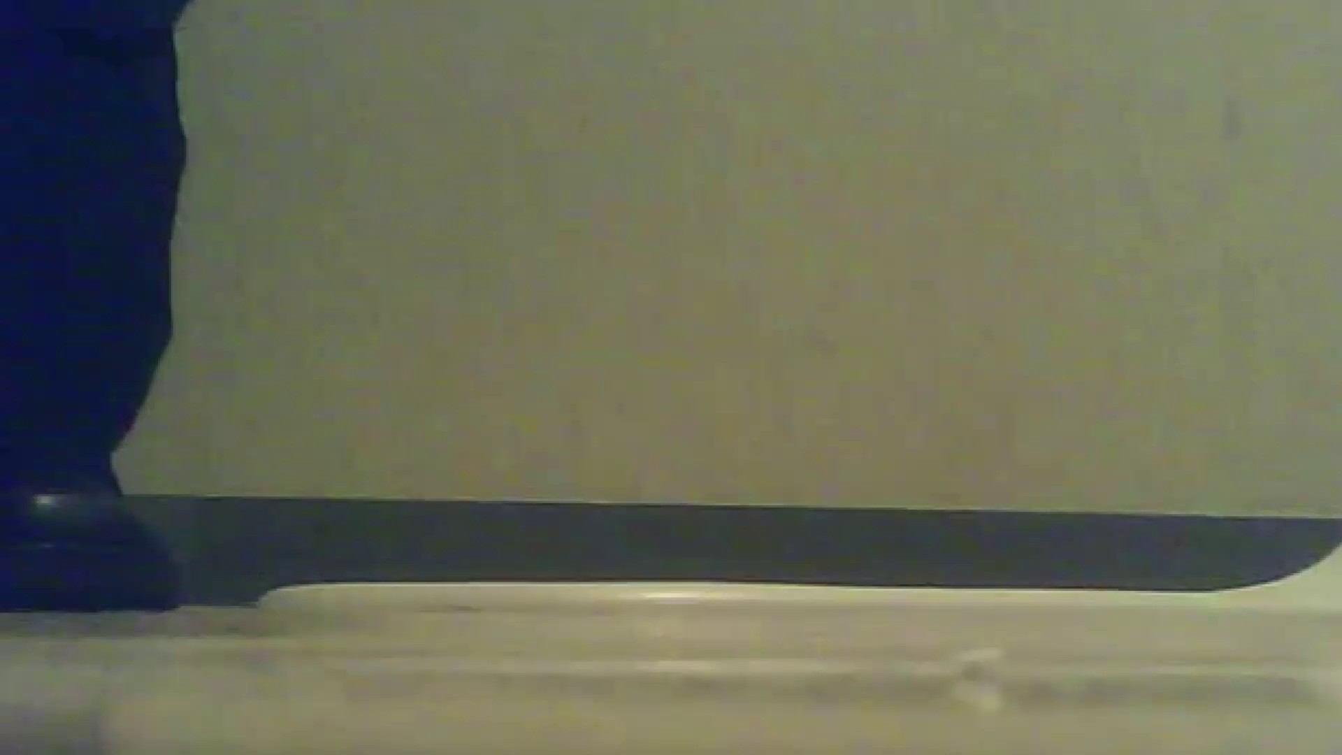 夏の思い出浜辺トイレ盗撮Vol.17 トイレの実態 | OLのボディ  65PIX 31