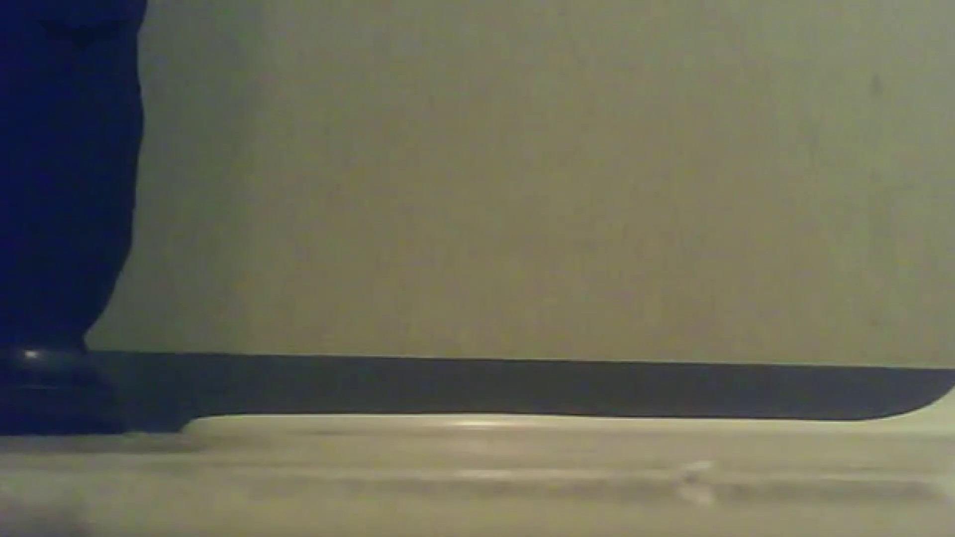 夏の思い出浜辺トイレ盗撮Vol.17 潜入 オメコ動画キャプチャ 65PIX 33