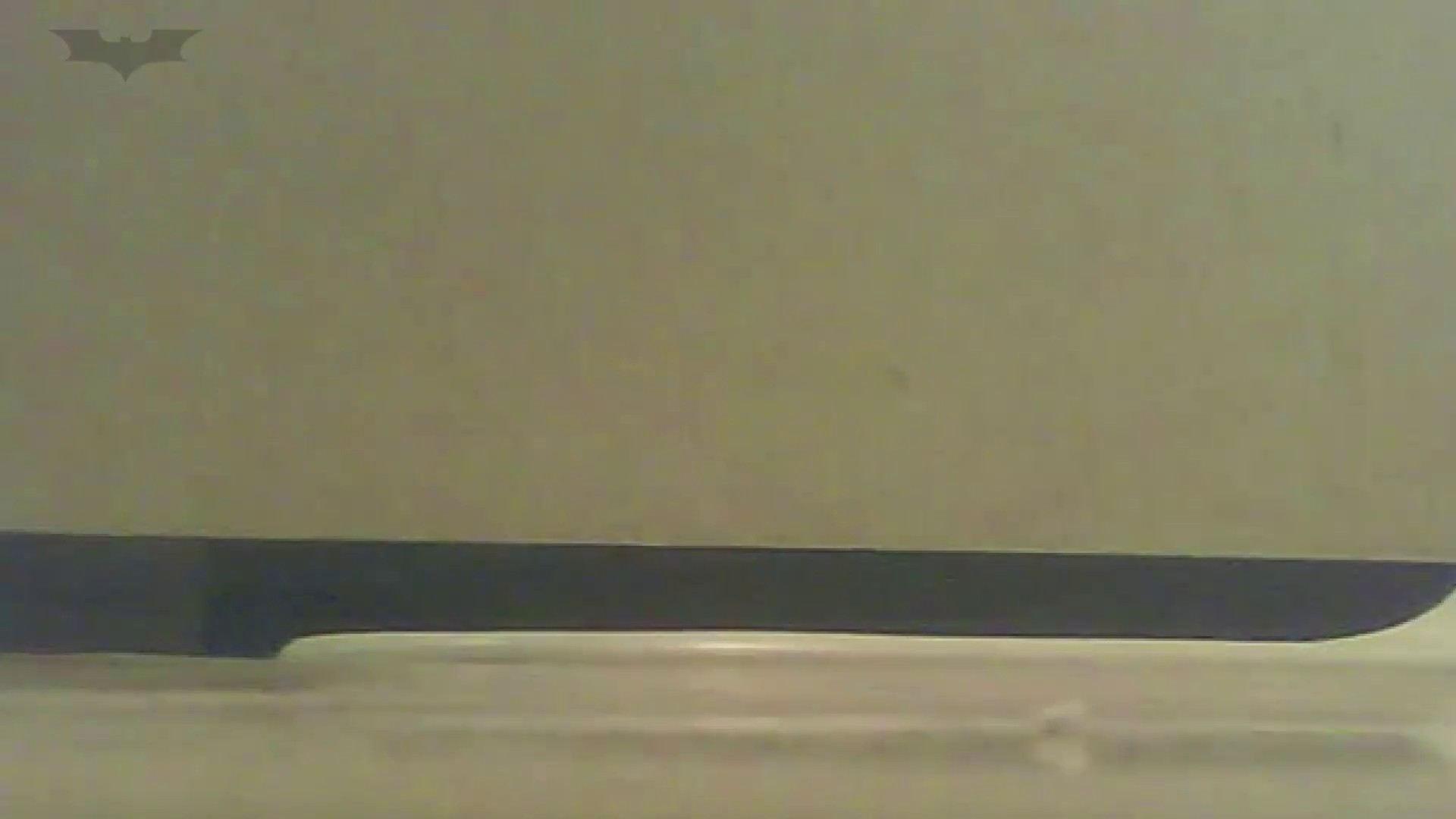 夏の思い出浜辺トイレ盗撮Vol.17 盗撮 オメコ動画キャプチャ 65PIX 37