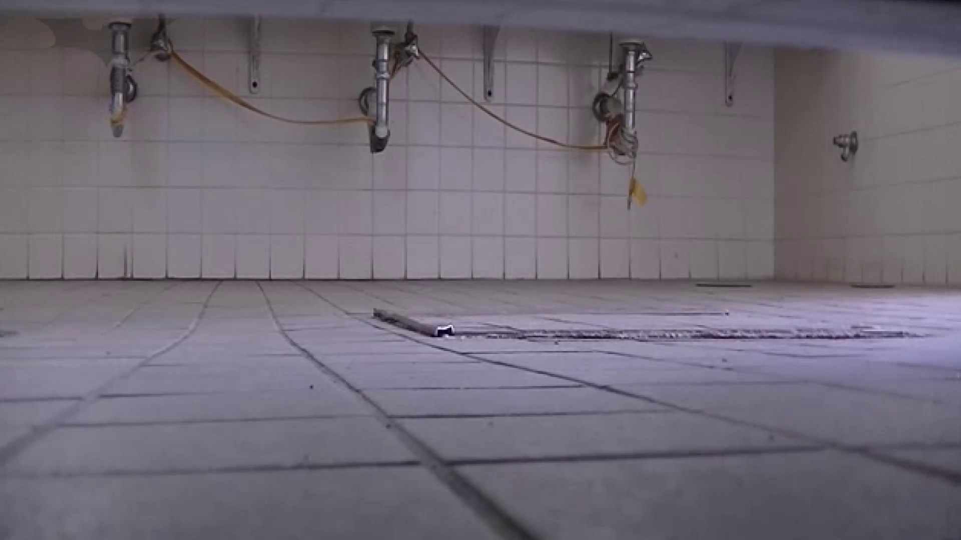 夏の思い出浜辺トイレ盗撮Vol.21 トイレの実態 すけべAV動画紹介 96PIX 23