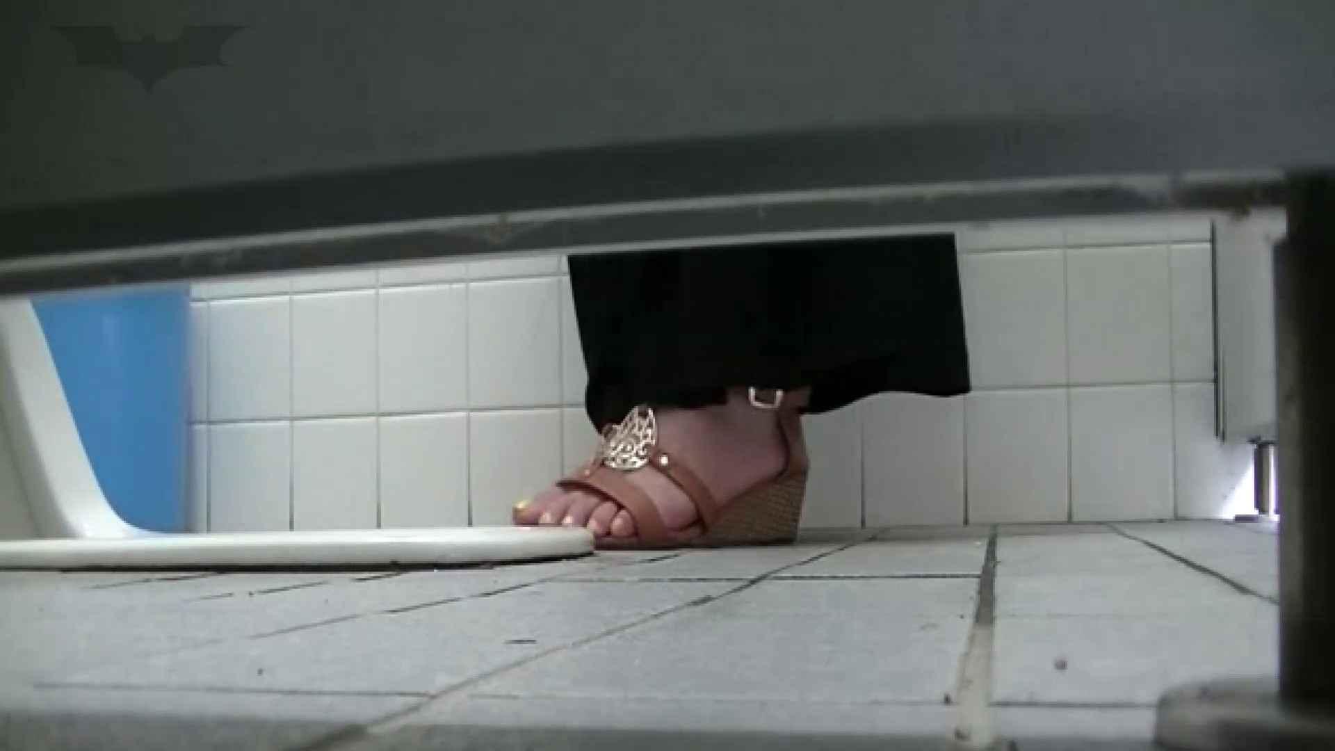 夏の思い出浜辺トイレ盗撮Vol.23 OLのボディ  95PIX 40