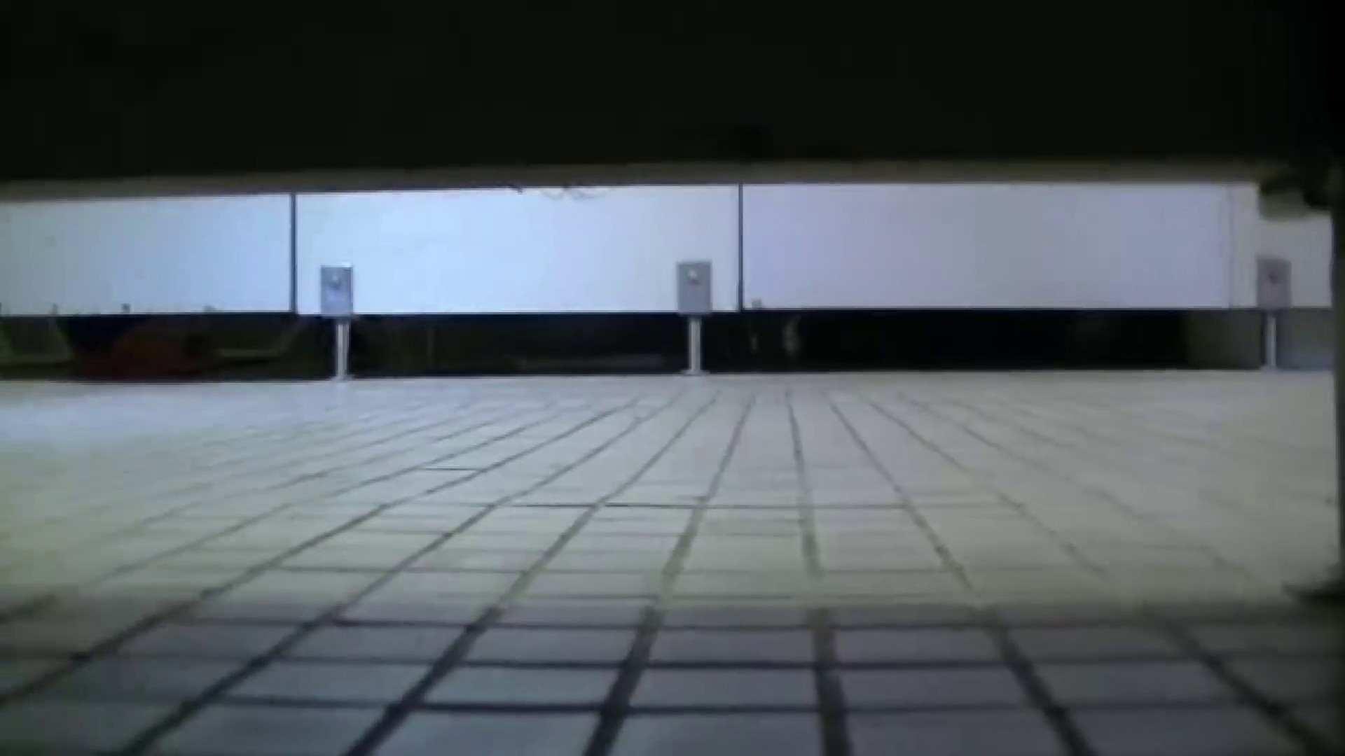 夏の思い出浜辺トイレ盗撮Vol.23 盗撮 隠し撮りオマンコ動画紹介 95PIX 62