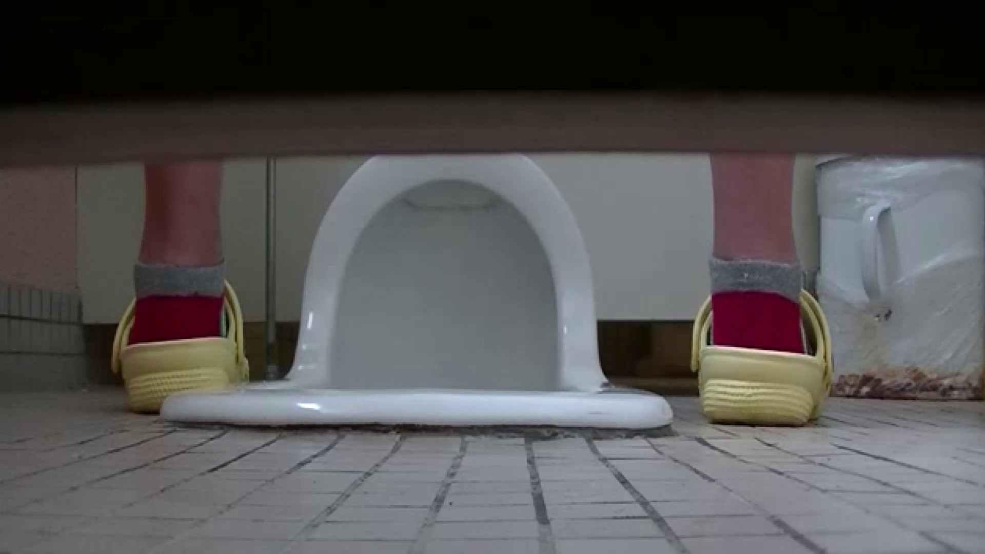 夏の思い出浜辺トイレ盗撮Vol.23 OLのボディ  95PIX 95