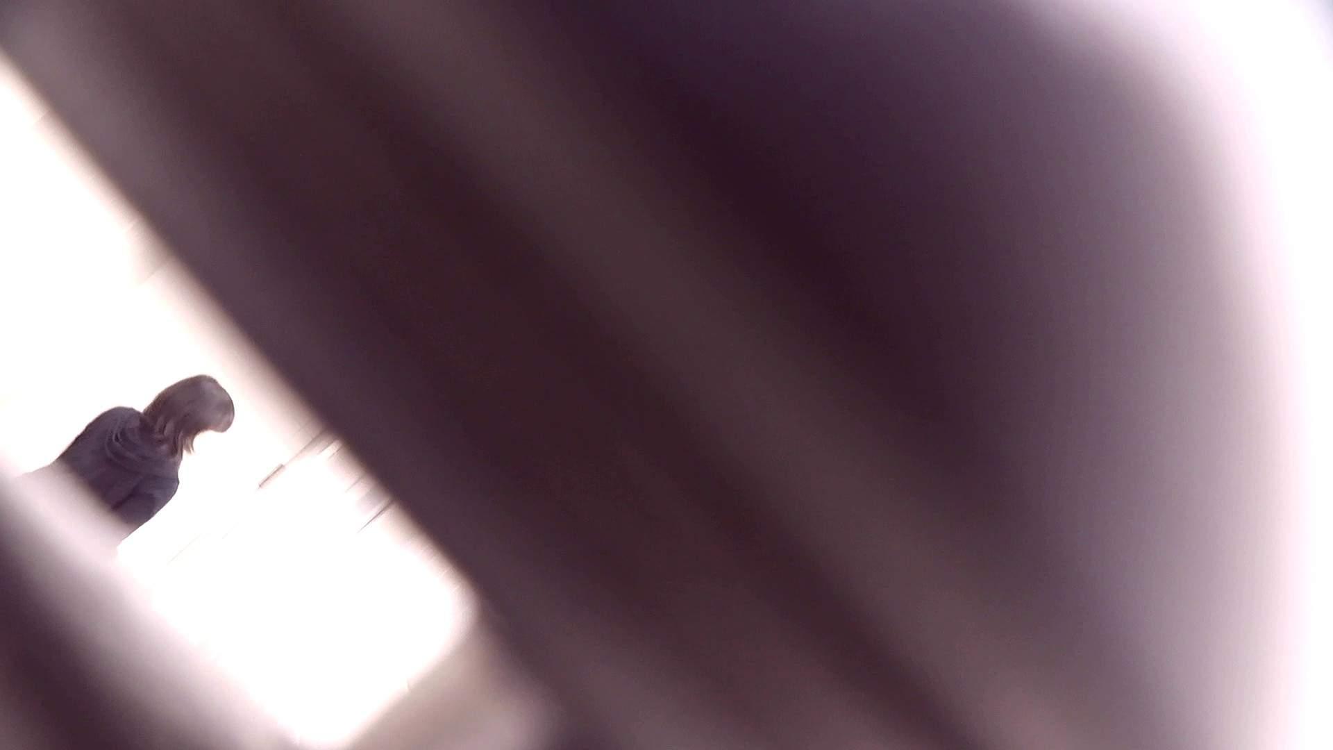 お銀さんの「洗面所突入レポート!!」Nol.17 OLのボディ ぱこり動画紹介 56PIX 20