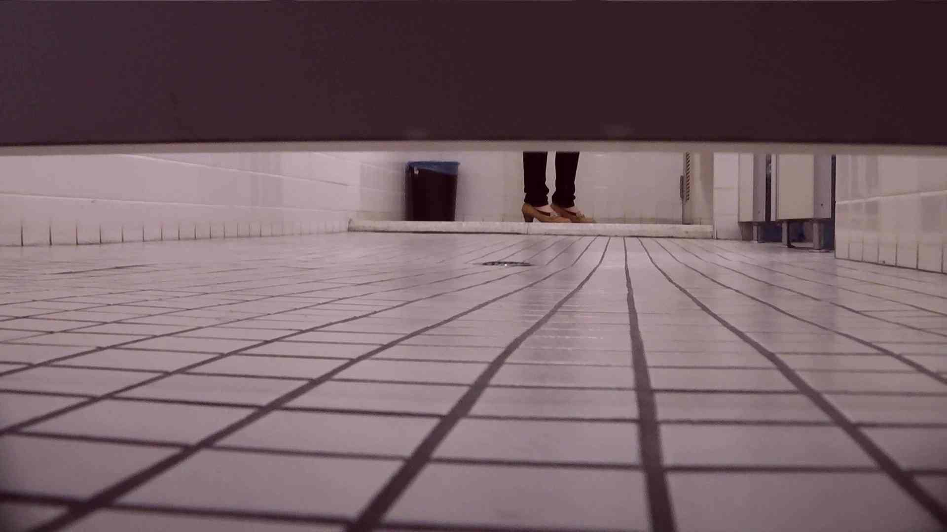 お銀さんの「洗面所突入レポート!!」Nol.17 OLのボディ ぱこり動画紹介 56PIX 35