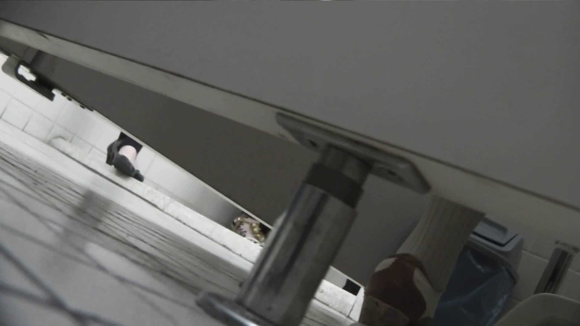 お銀さんの「洗面所突入レポート!!」Nol.22 OLのボディ AV動画キャプチャ 90PIX 44