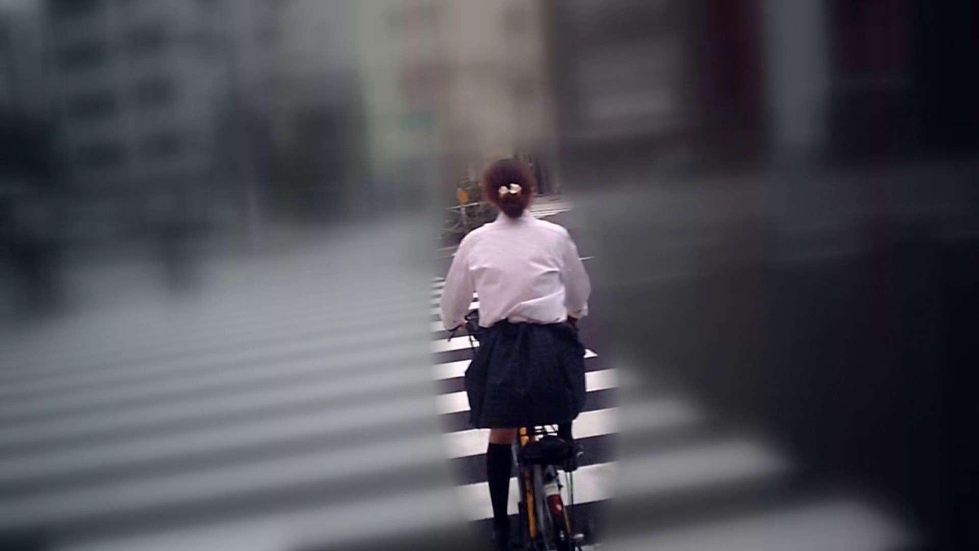 自転車パンチラ Vol.05 車 盗撮動画紹介 98PIX 4