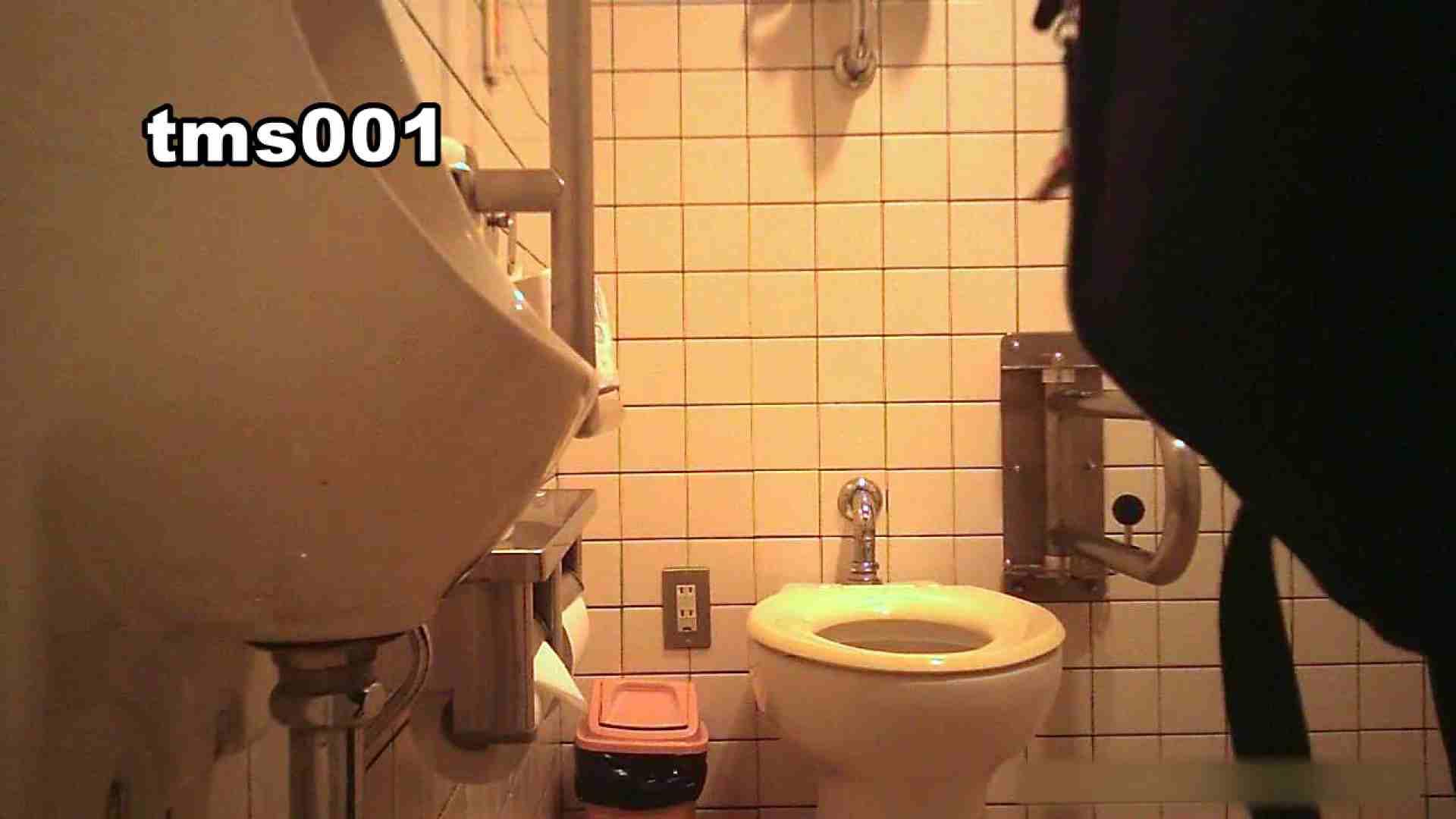 トイメンの割れ目 vol.001 OLのボディ  103PIX 24