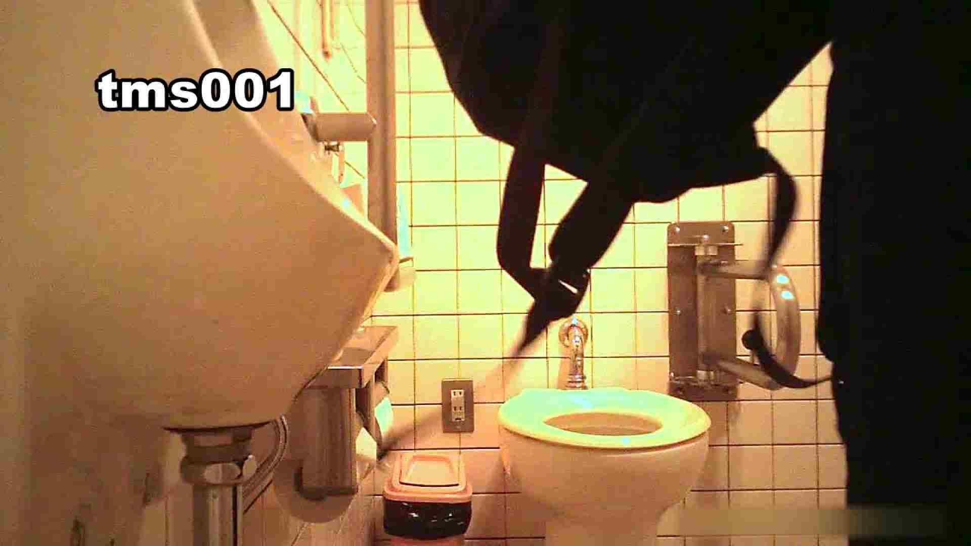 トイメンの割れ目 vol.001 OLのボディ   0  103PIX 25