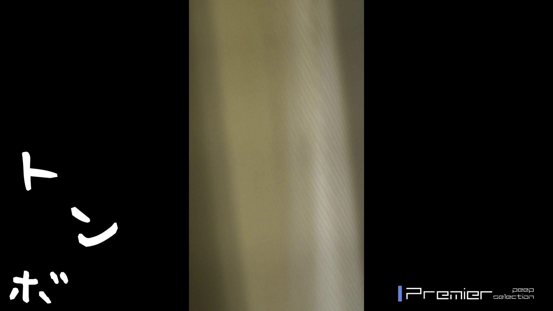 美女達の私生活に潜入!美形OLの生着替え OLのボディ ワレメ無修正動画無料 103PIX 88