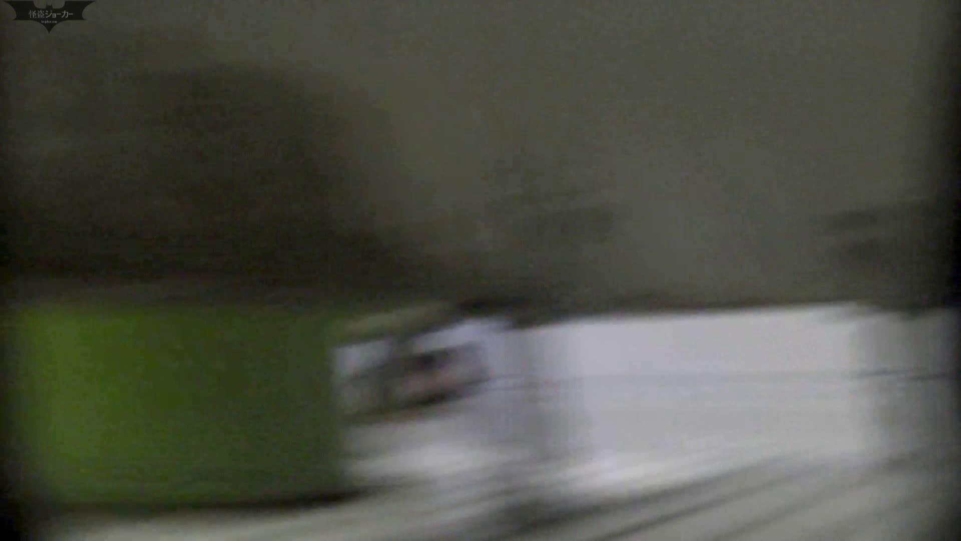 洗面所特攻隊 vol.006 OLのボディ | 洗面所  81PIX 11