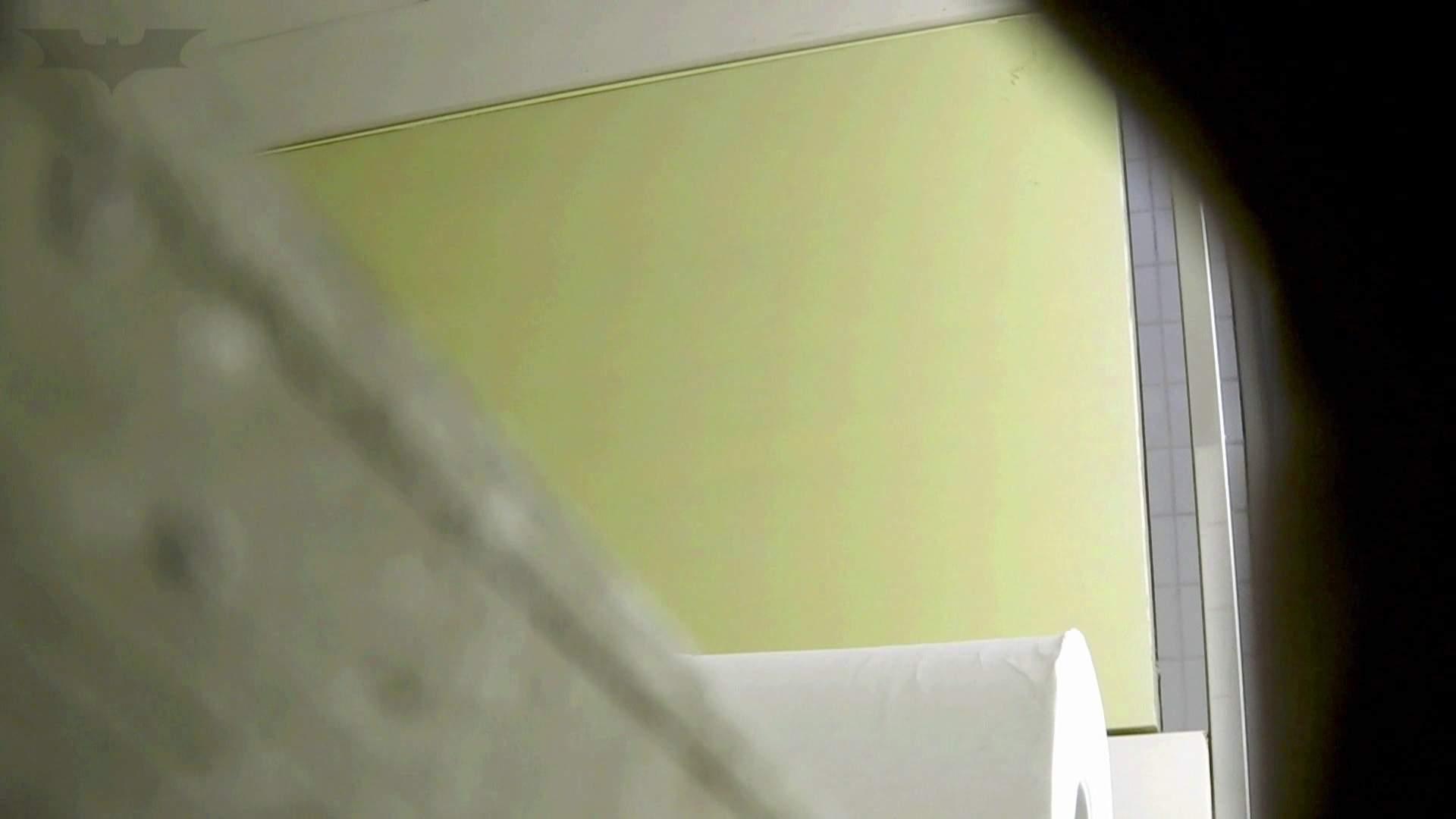 洗面所特攻隊 vol.74 last 2総勢16名激撮【2015・29位】 洗面所 | OLのボディ  85PIX 55