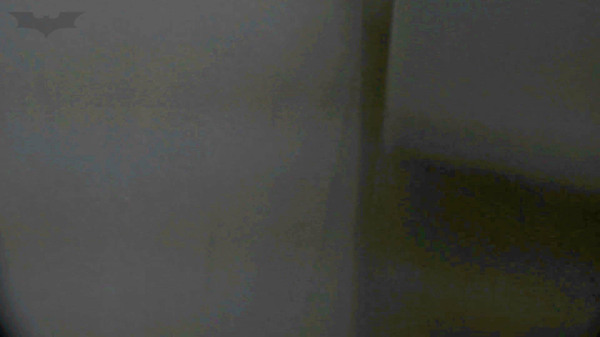 洗面所特攻隊 vol.74 last 2総勢16名激撮【2015・29位】 洗面所 | OLのボディ  85PIX 67
