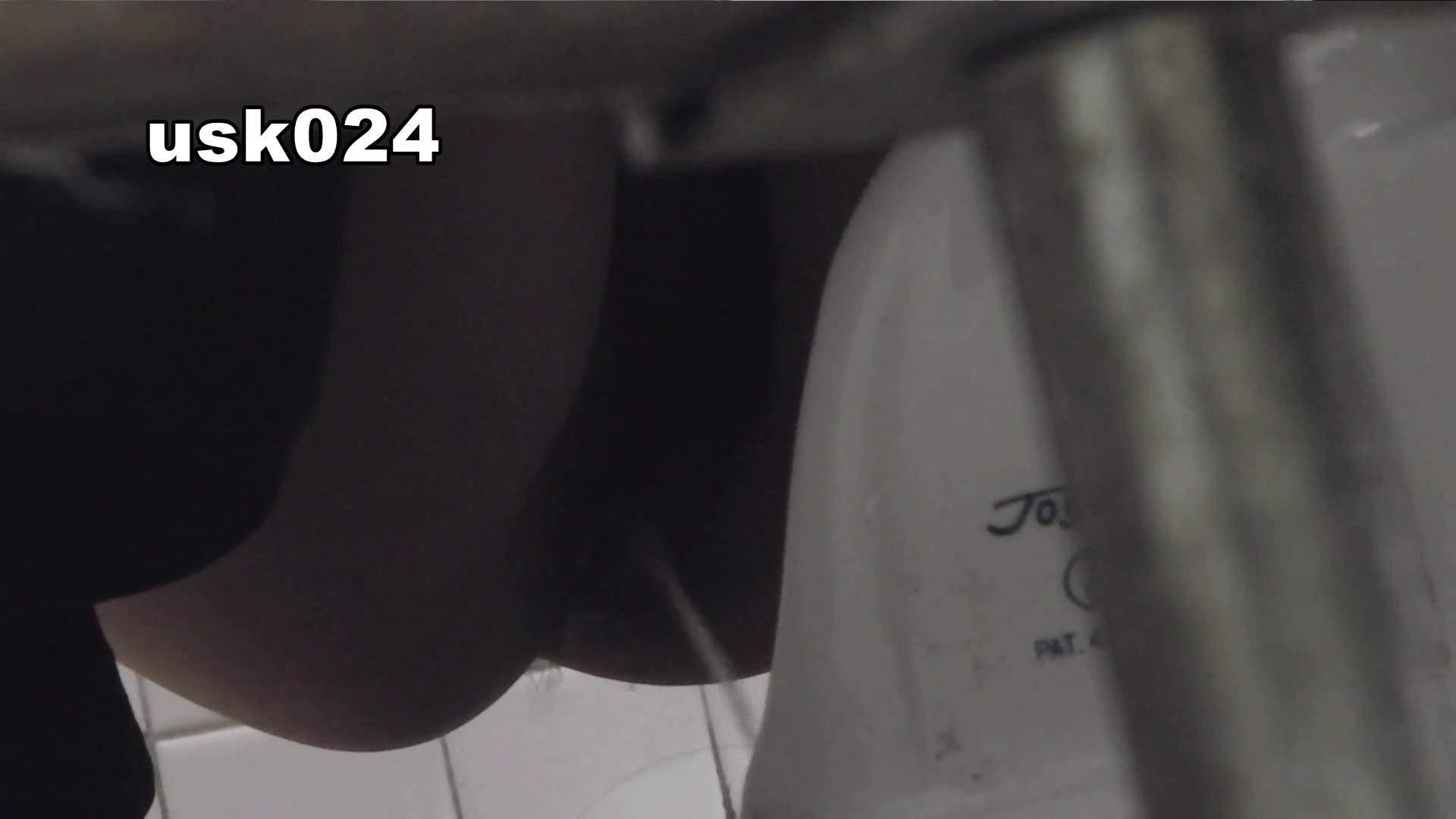洗面所特攻隊 vol.024 (*´Д`)ハァハァ OLのボディ  48PIX 18