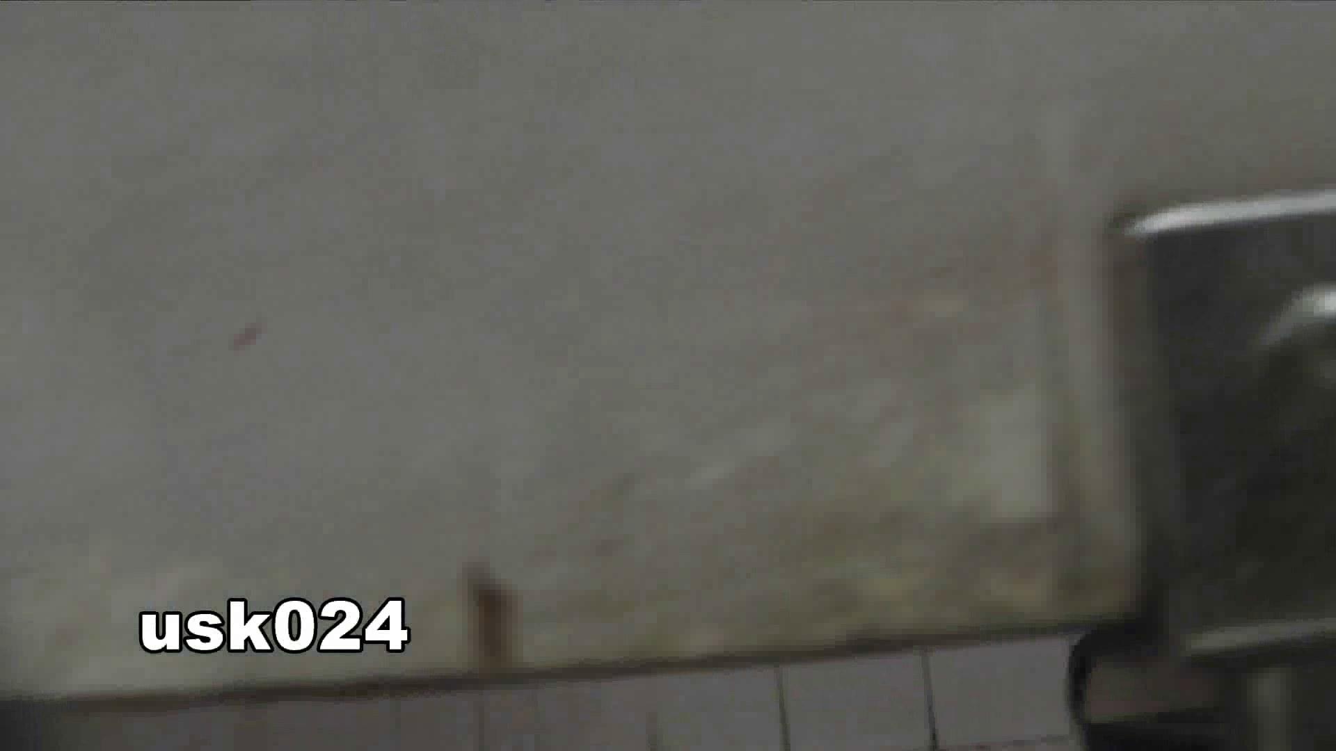 洗面所特攻隊 vol.024 (*´Д`)ハァハァ OLのボディ  48PIX 24
