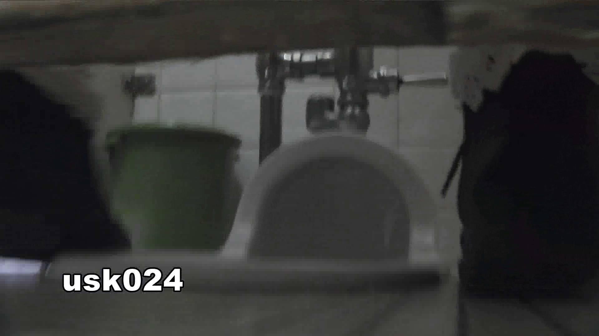 洗面所特攻隊 vol.024 (*´Д`)ハァハァ OLのボディ  48PIX 26