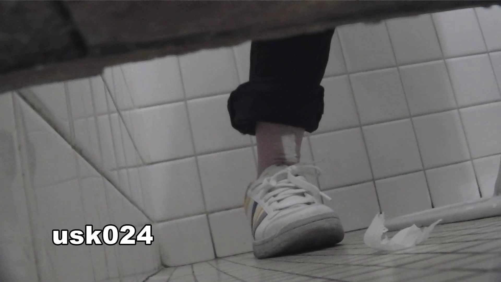 洗面所特攻隊 vol.024 (*´Д`)ハァハァ OLのボディ  48PIX 28