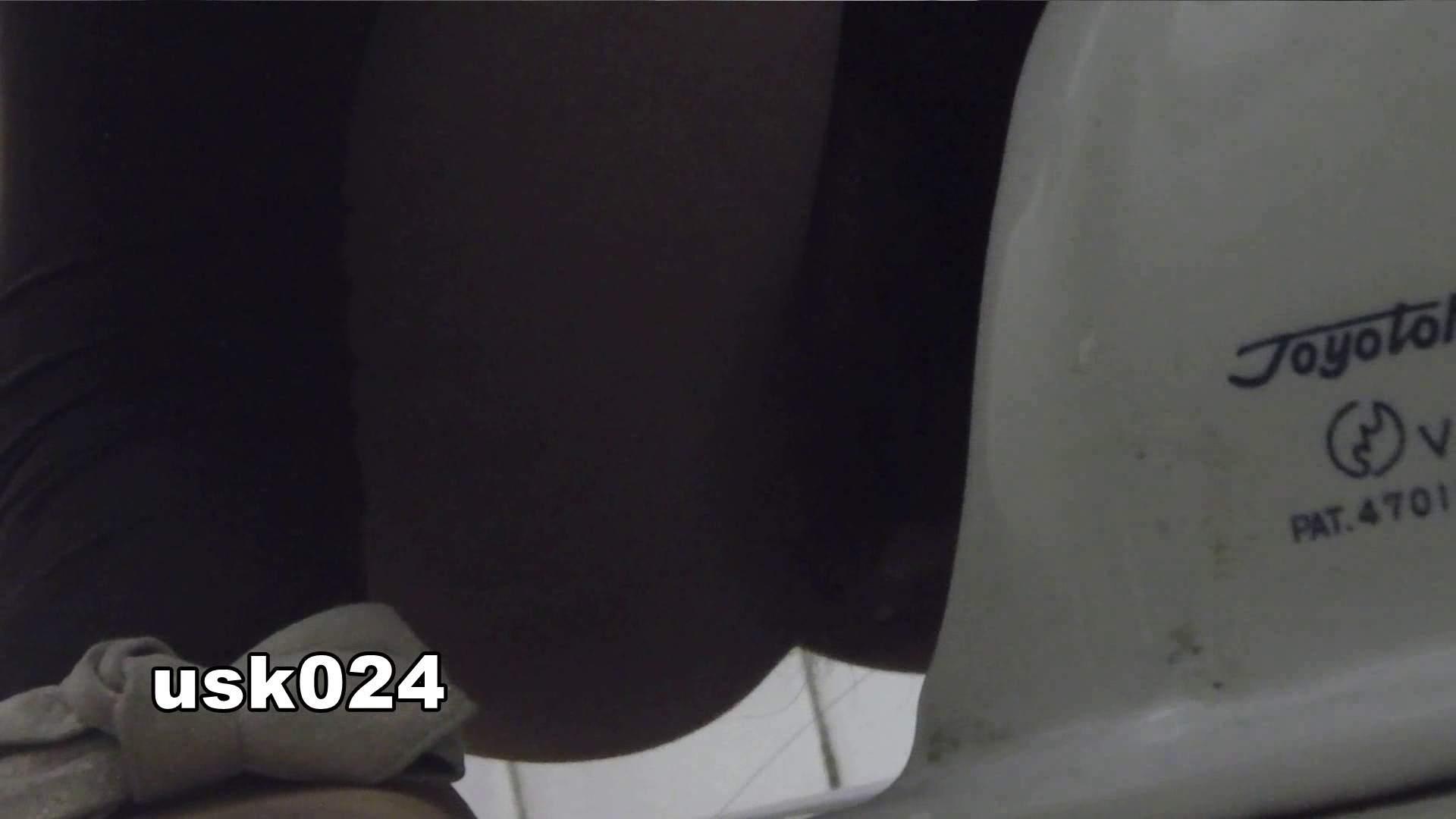 洗面所特攻隊 vol.024 (*´Д`)ハァハァ OLのボディ  48PIX 40