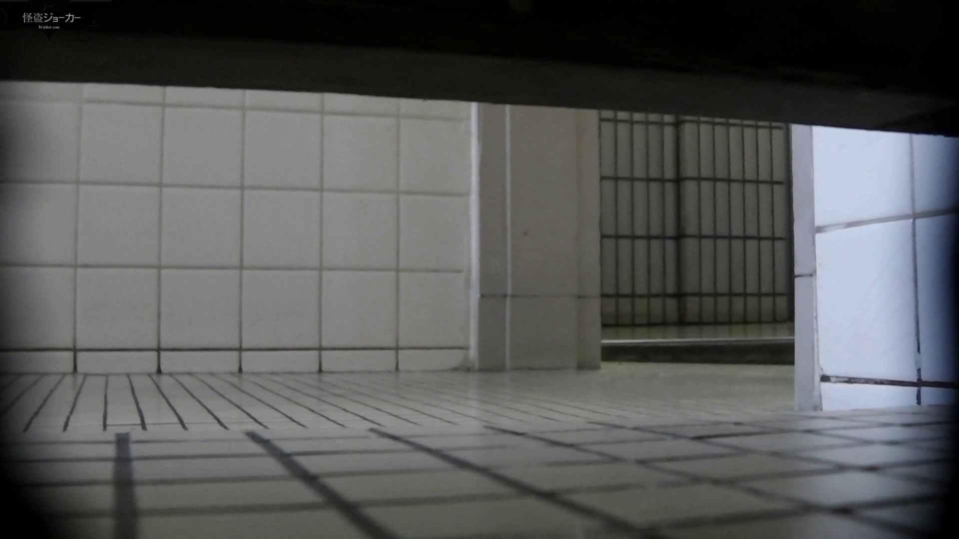【美しき個室な世界】洗面所特攻隊 vol.051 洗面所 | OLのボディ  72PIX 51