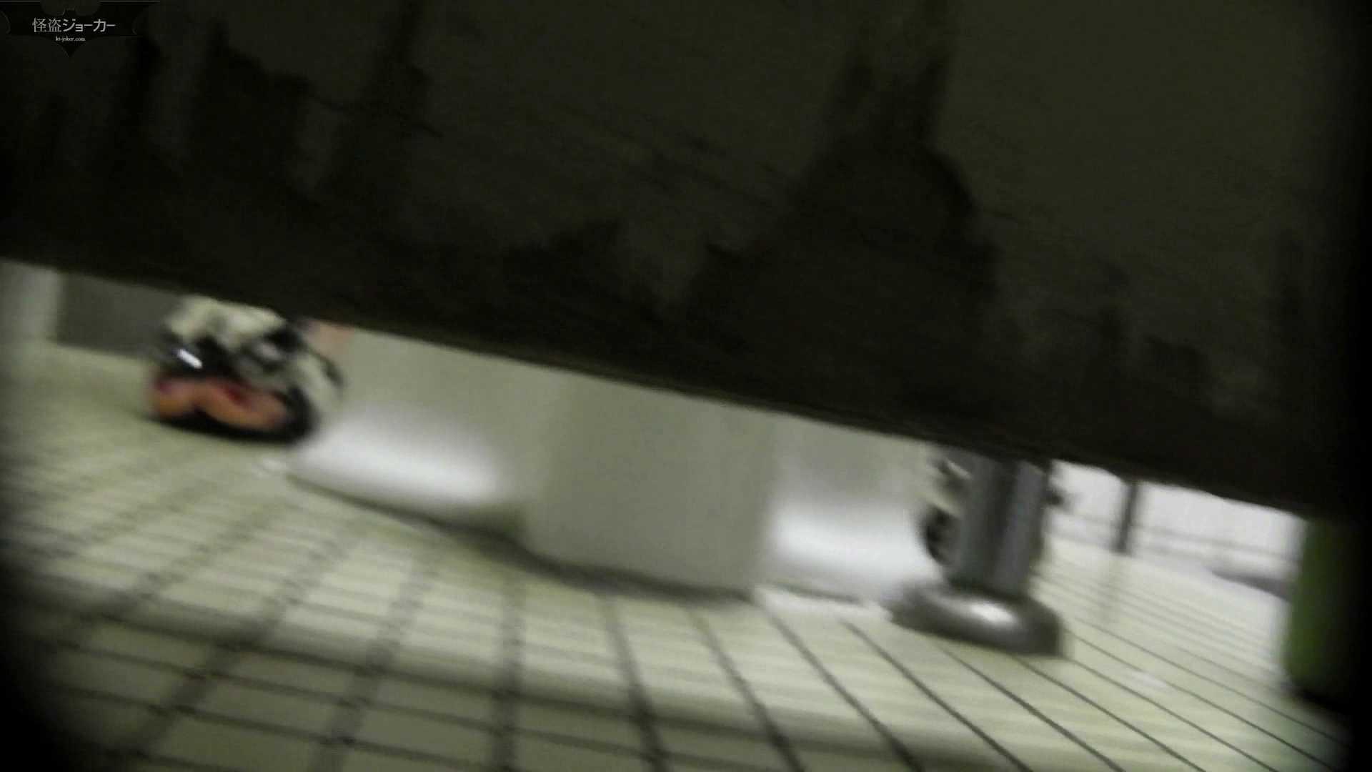 【美しき個室な世界】洗面所特攻隊 vol.051 洗面所  72PIX 52