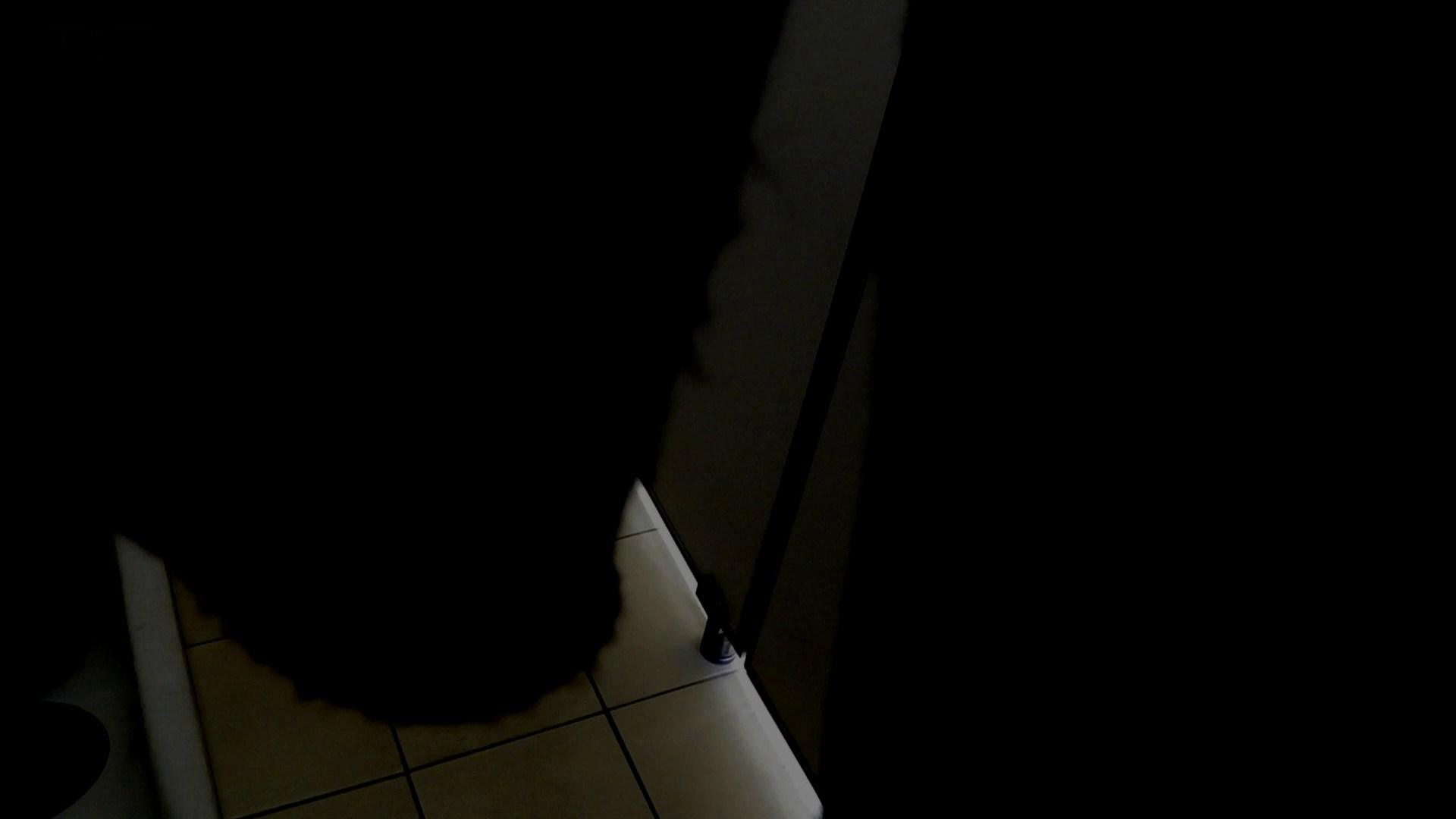 美しい日本の未来 No.11 進歩!【2015・03位】 ギャル盗撮映像 ワレメ動画紹介 103PIX 78