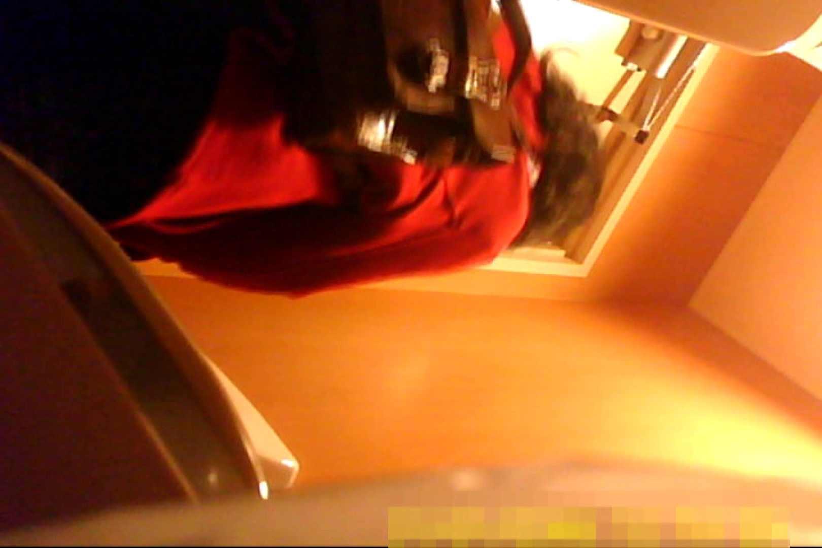 魅惑の化粧室~禁断のプライベート空間~vol.6 OLのボディ ワレメ動画紹介 103PIX 75